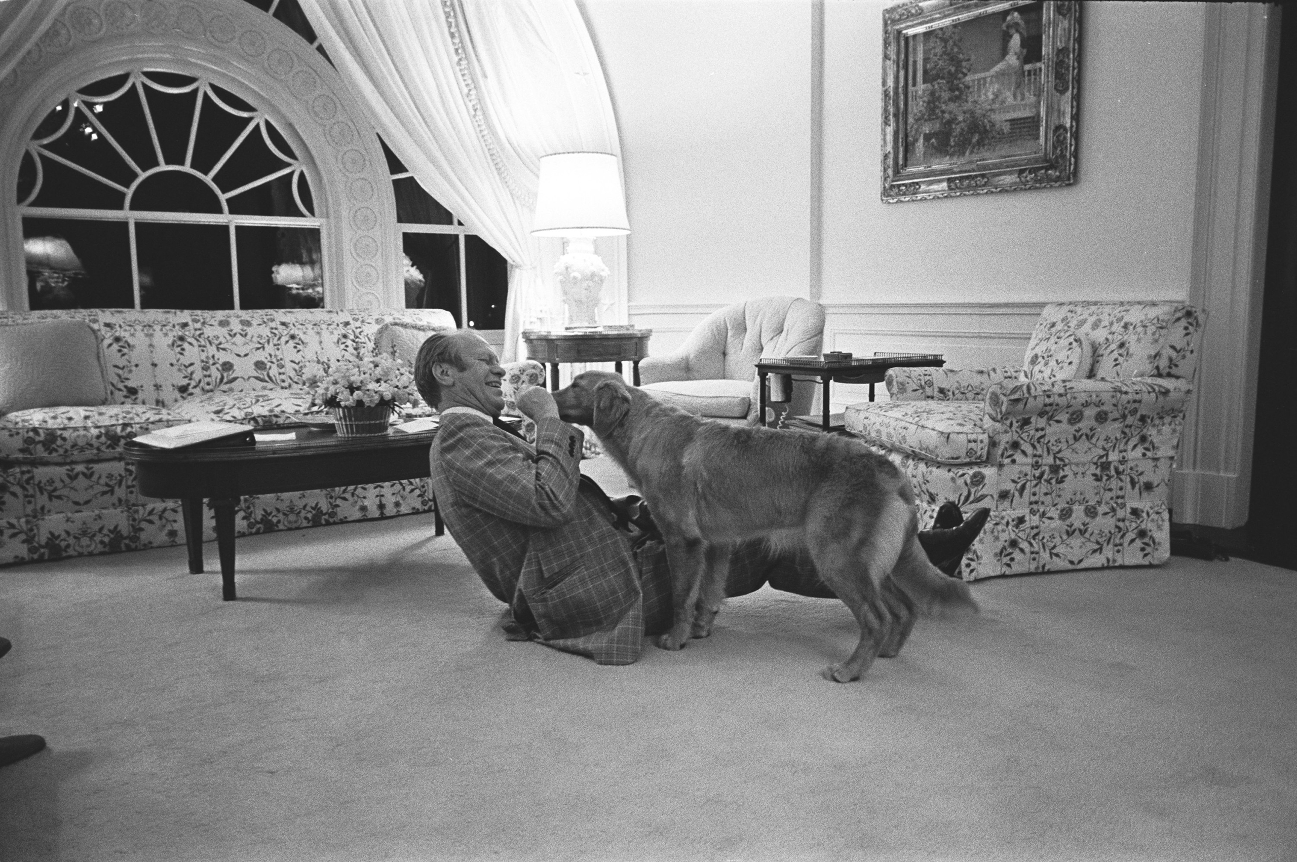 Gerald R. Ford wrestles with his new pet Golden Retriever, which the Fords named Liberty, in the second story family room of the White House Executive Residence on Feb. 2, 1975. Liberty was a gift from Ford's daughter, Susan, and his personal photographer, David Hume Kennerly.