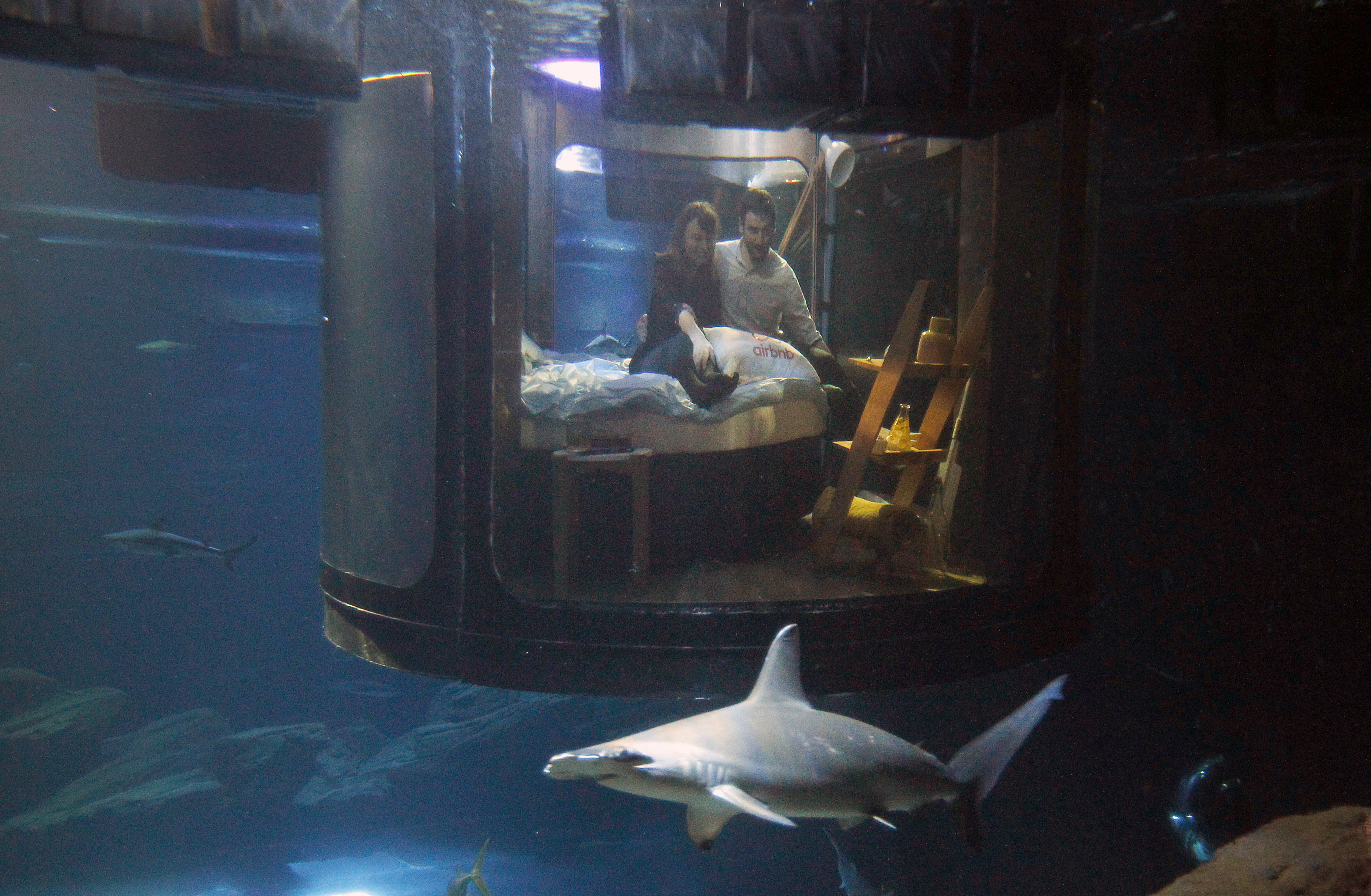Alister Shipman, right, and Hannah Simpson, winners of an Airbnb competition, pose in a bed of an underwater room structure installed in the Aquarium of Paris, on April 11, 2016.