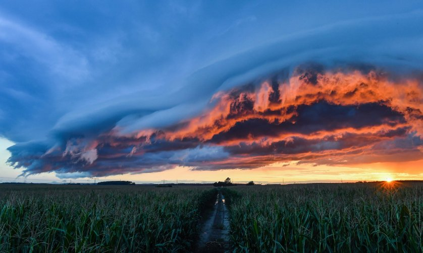Storm clouds dramatically illuminated by the setting sun on a corn field in Petersdorf, Germany, Aug. 21, 2016.
