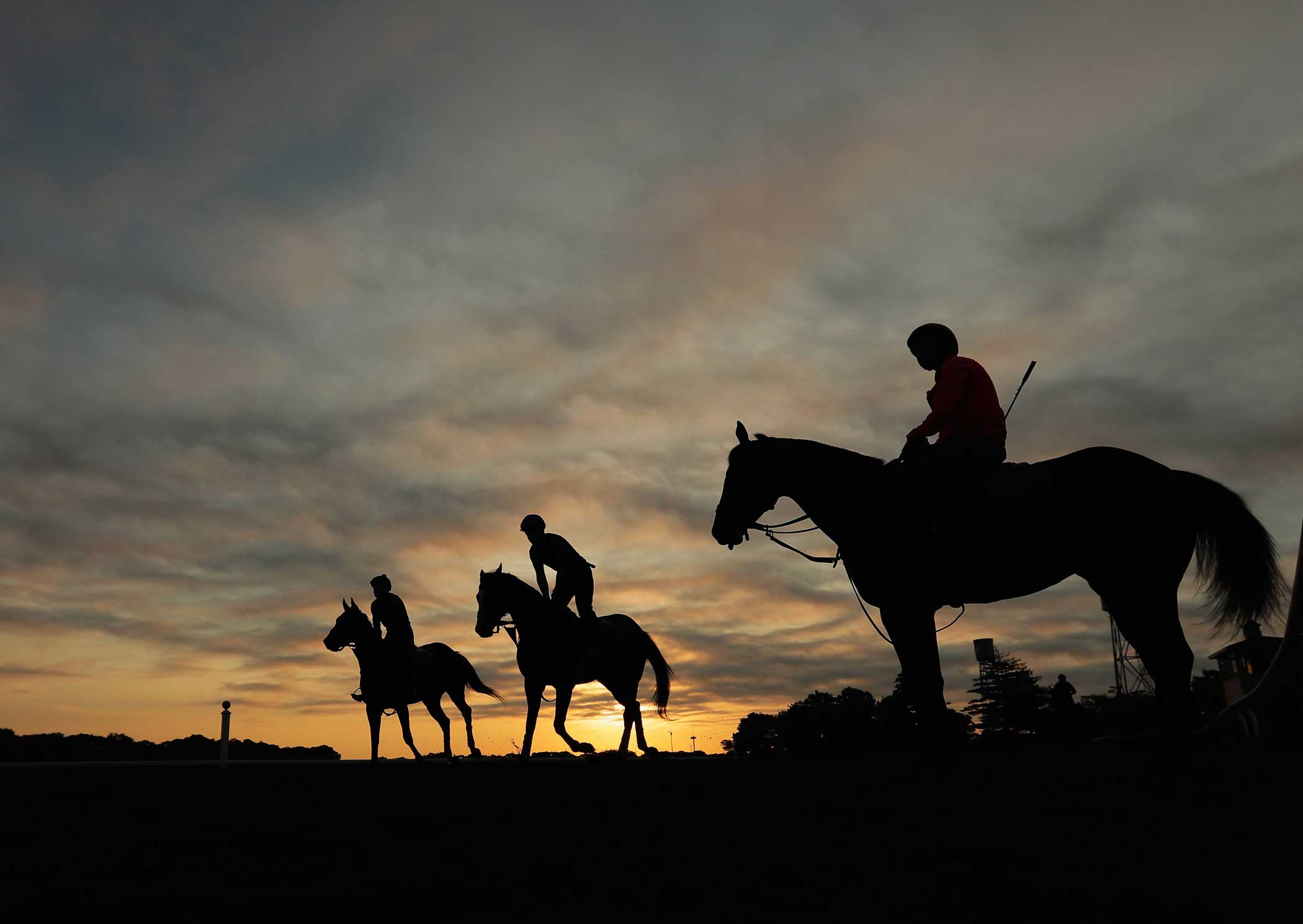 Horses train prior to the 148th running of the Belmont Stakes at Belmont Park on June 2, 2016 in Elmont, New York.