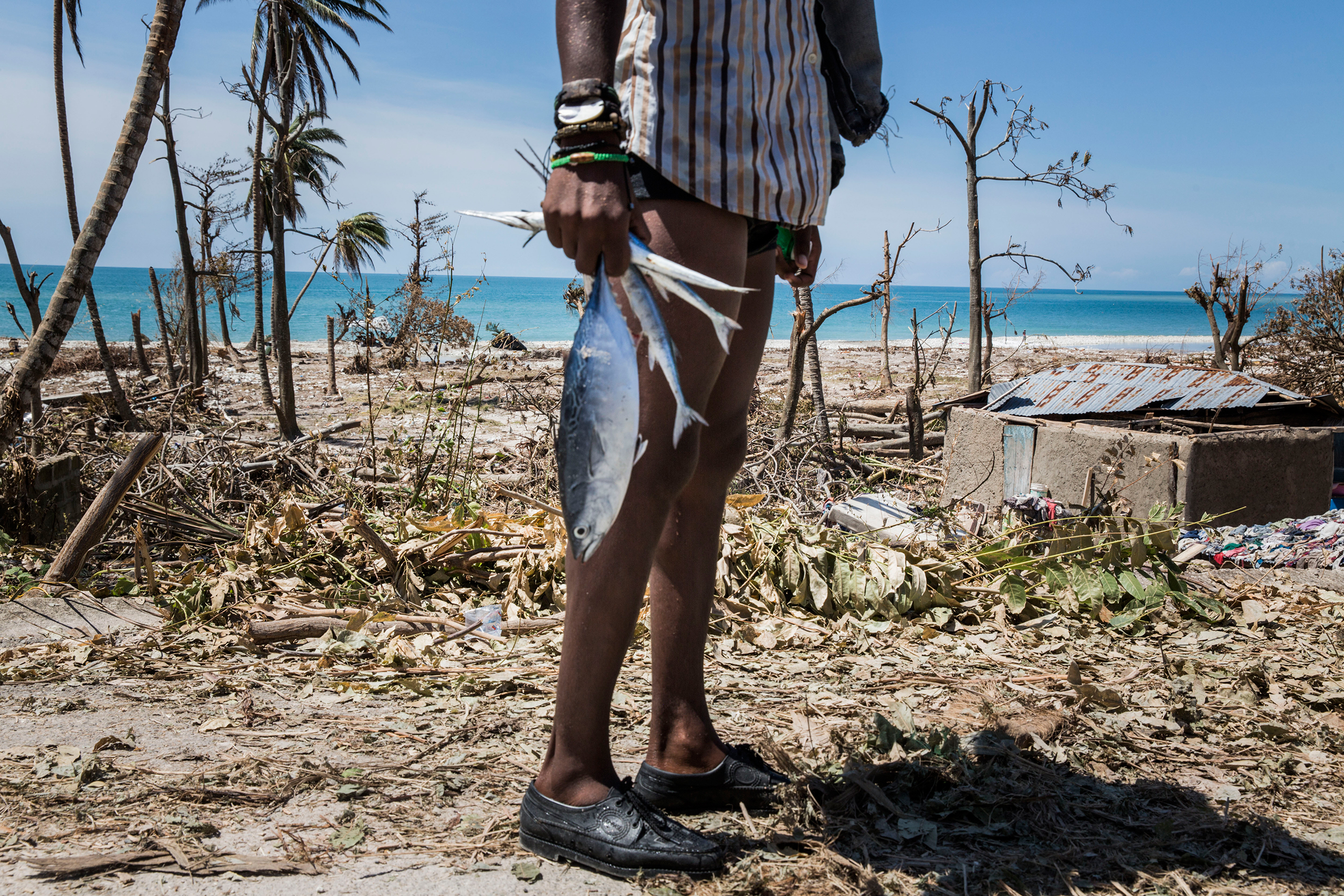 A boy carries a fish in an area that suffered widespread destruction near Port Salut, in southwestern Haiti, on Oct. 8, 2016.