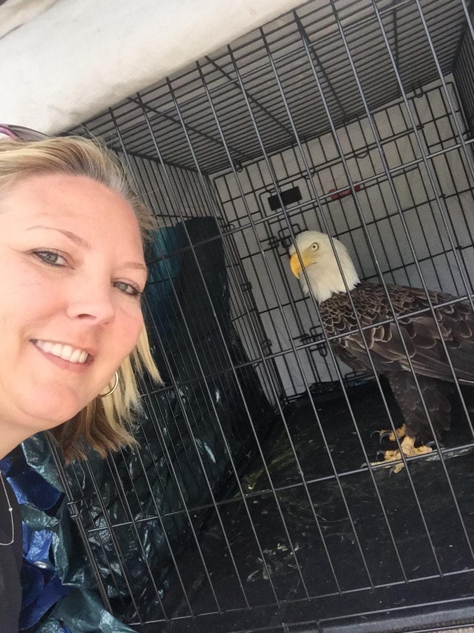West poses for a selfie with the eagle after it was freed.