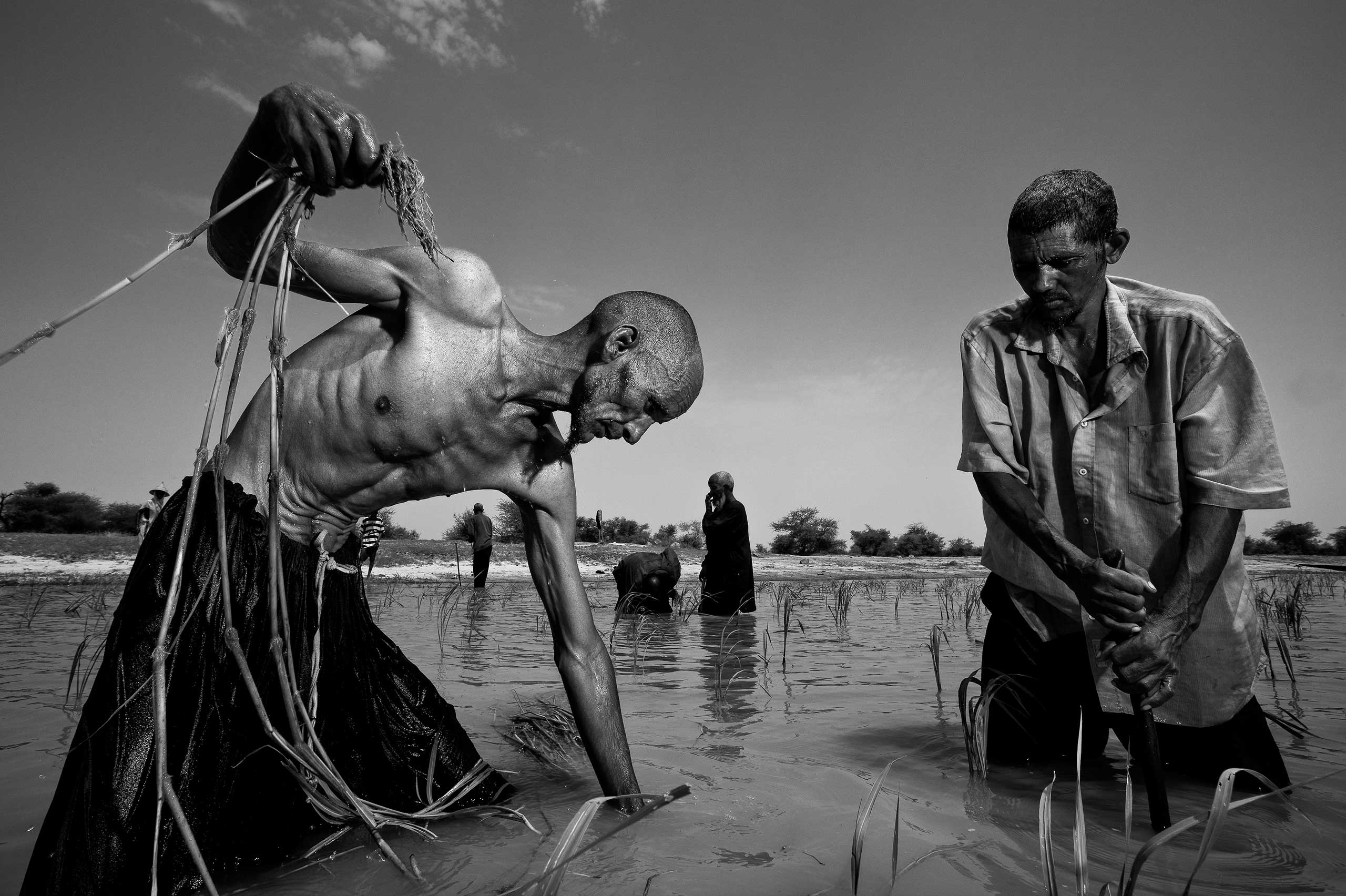 (Photo by Brent Stirton/Getty Images reportage.)