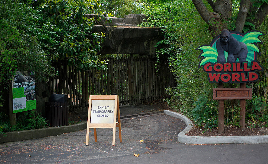 Visitors walk past the main entrance to the Cincinnati Zoo's Gorilla World exhibit days after a boy fell into the moat and officials were forced to kill Harambe, June 2, 2016 in Cincinnati, Ohio.