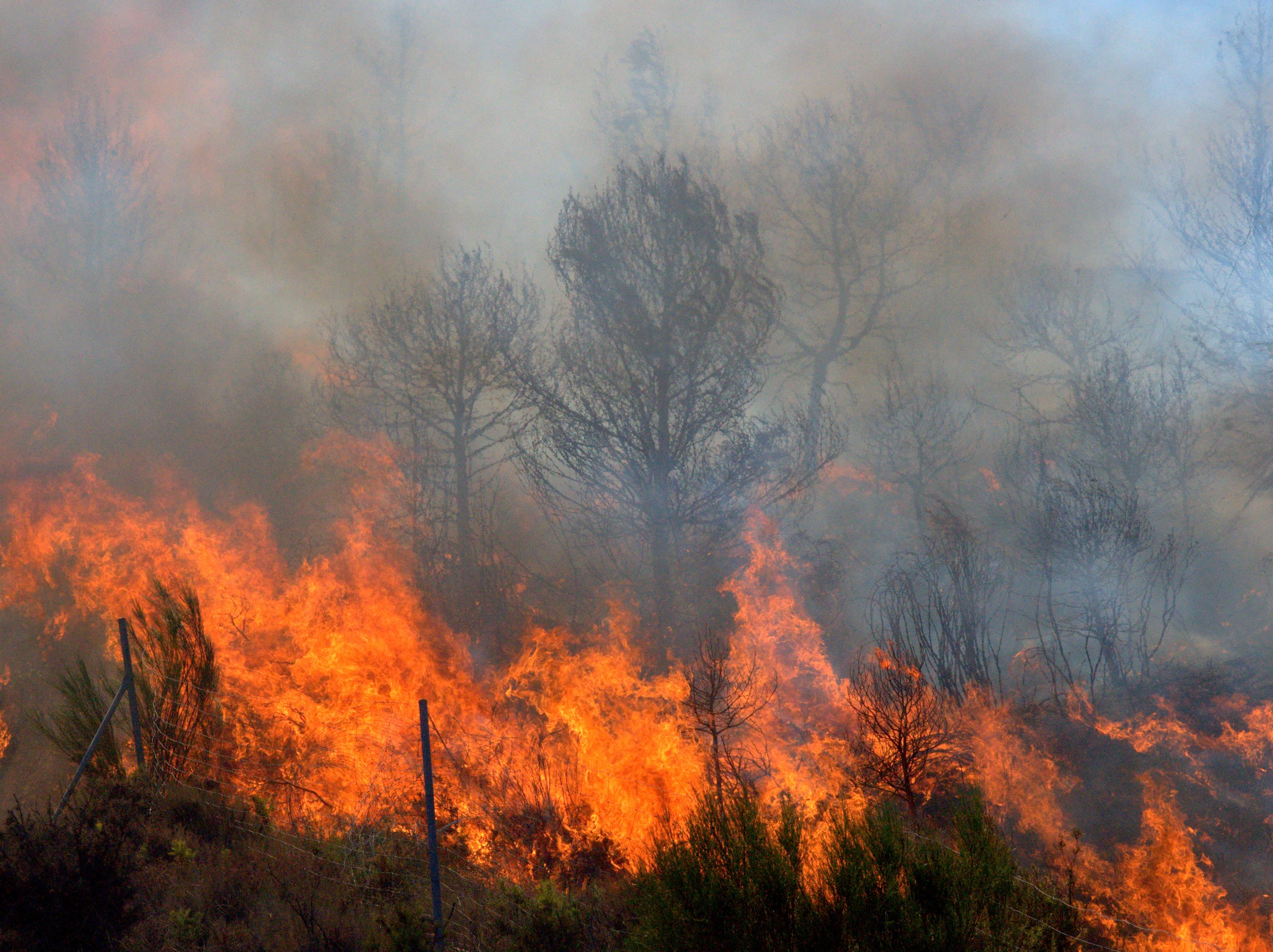 Fire in Mediterranean region