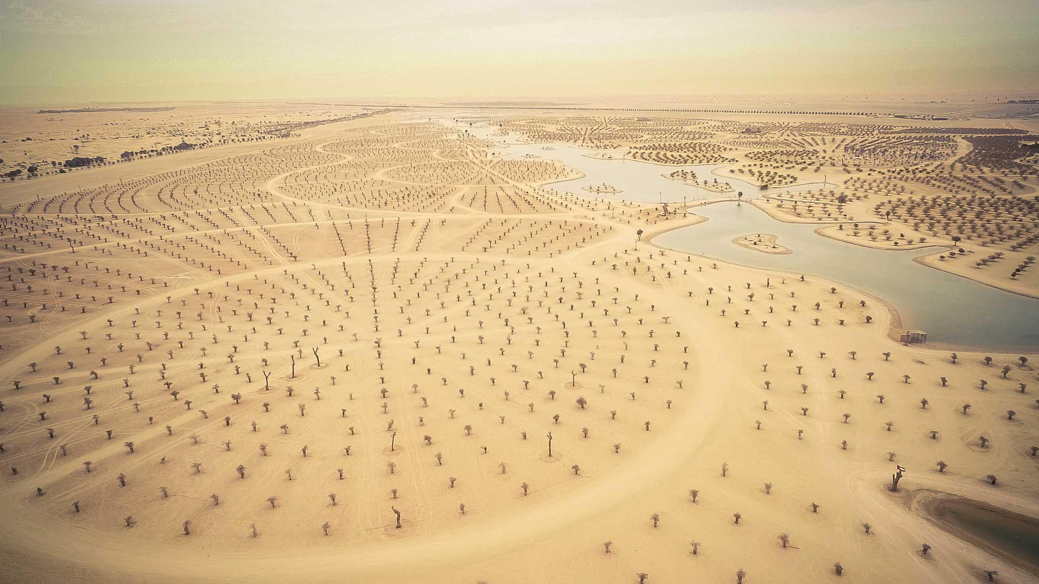 Al Quadra lakes in Dubai.