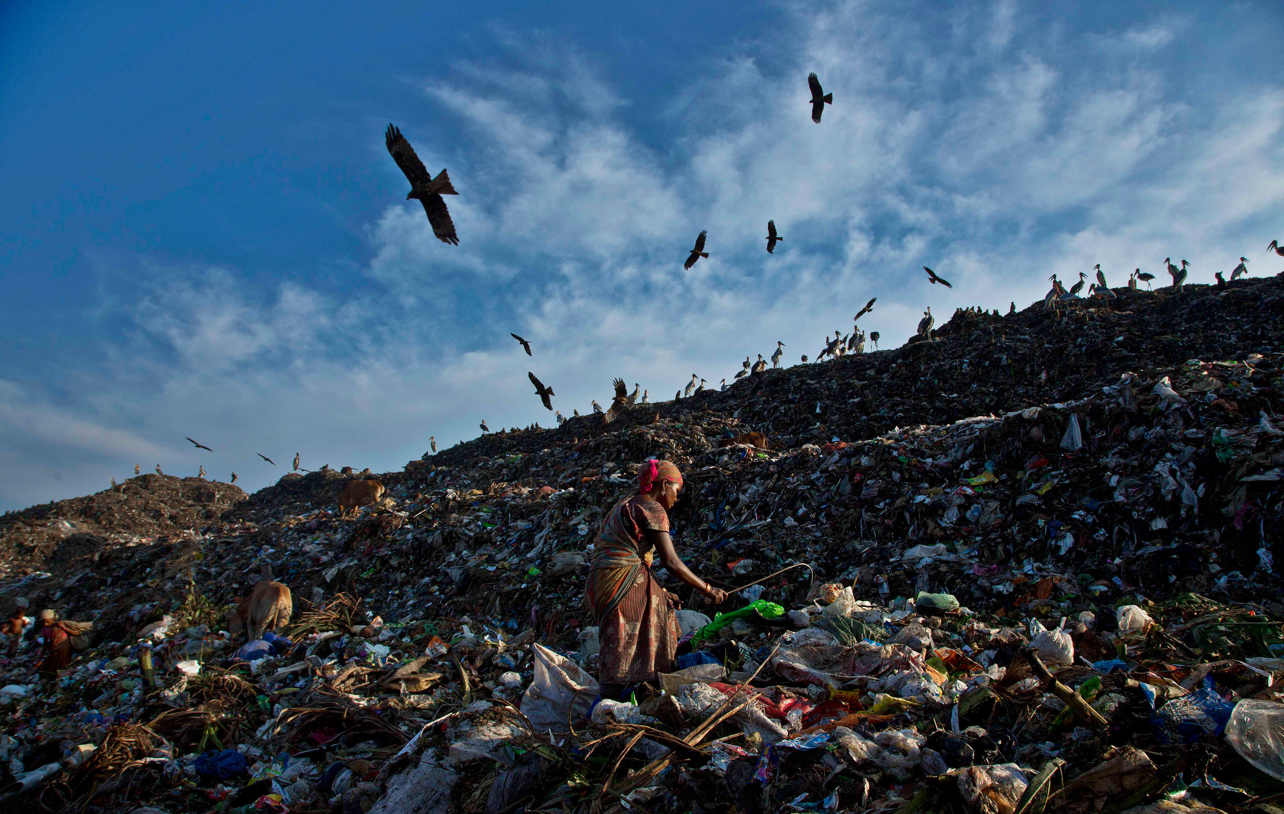 A woman searches for recyclable material at a garbage dumping site on the outskirts of Gauhati, India, on Oct. 2, 2016.