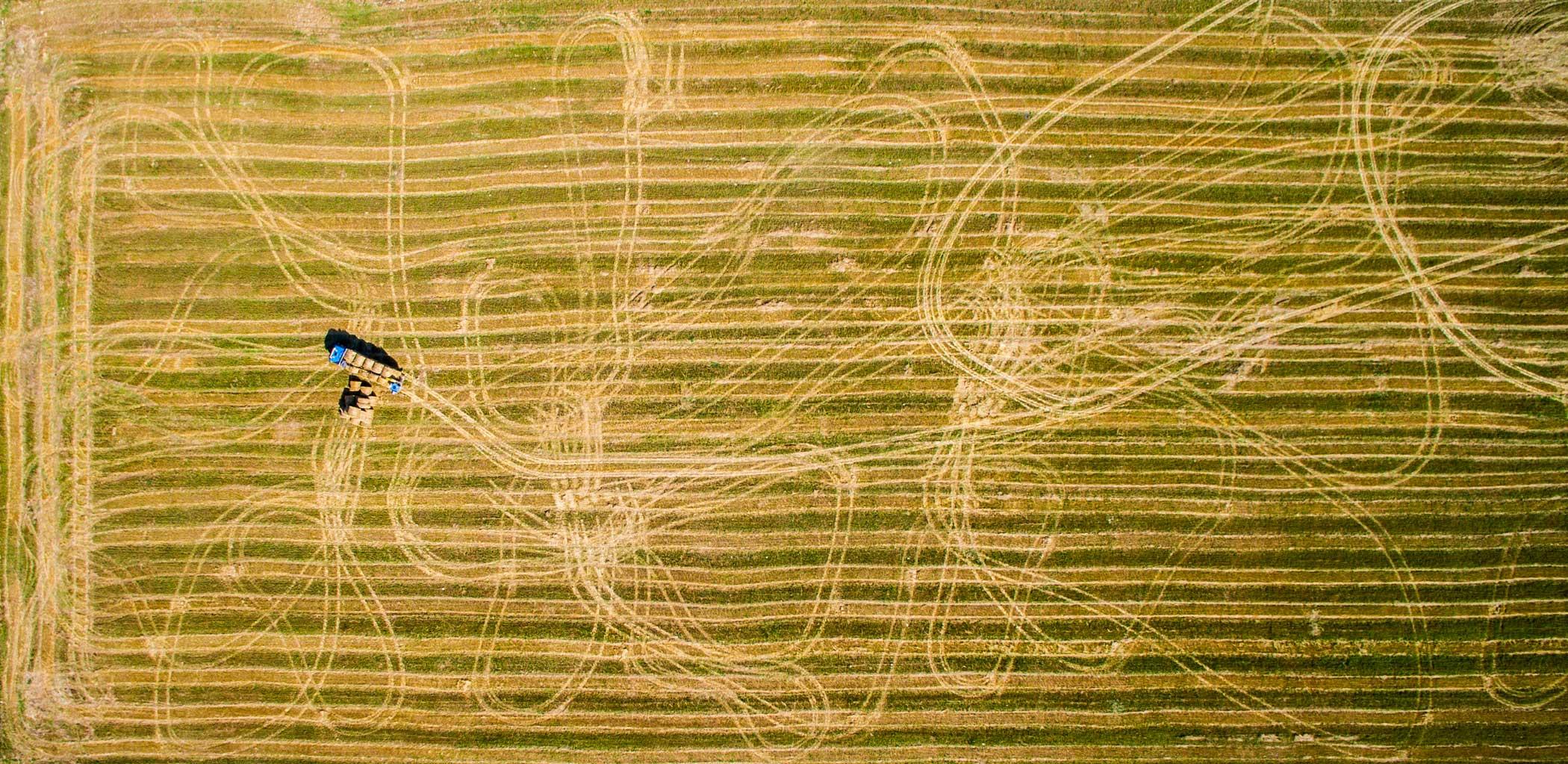 Haystack production in Brasov, Romania.
