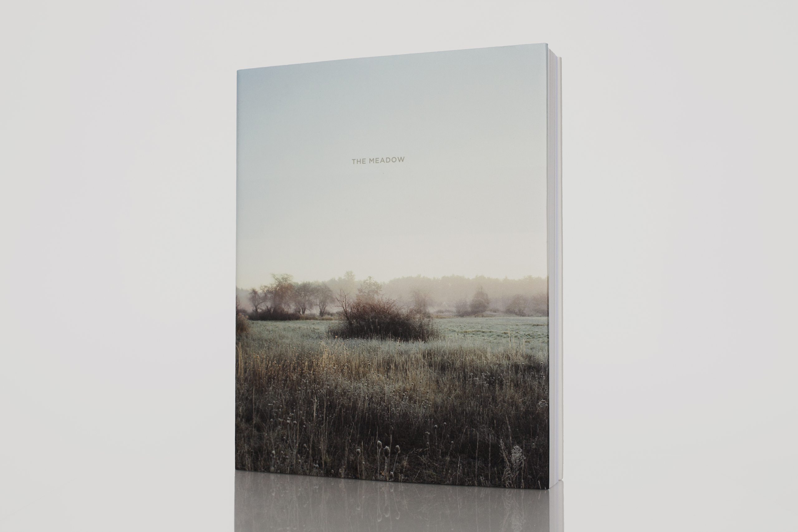 The Meadow by Barbara Bosworth and  Margot Anne KelleyPublished by Radius Books