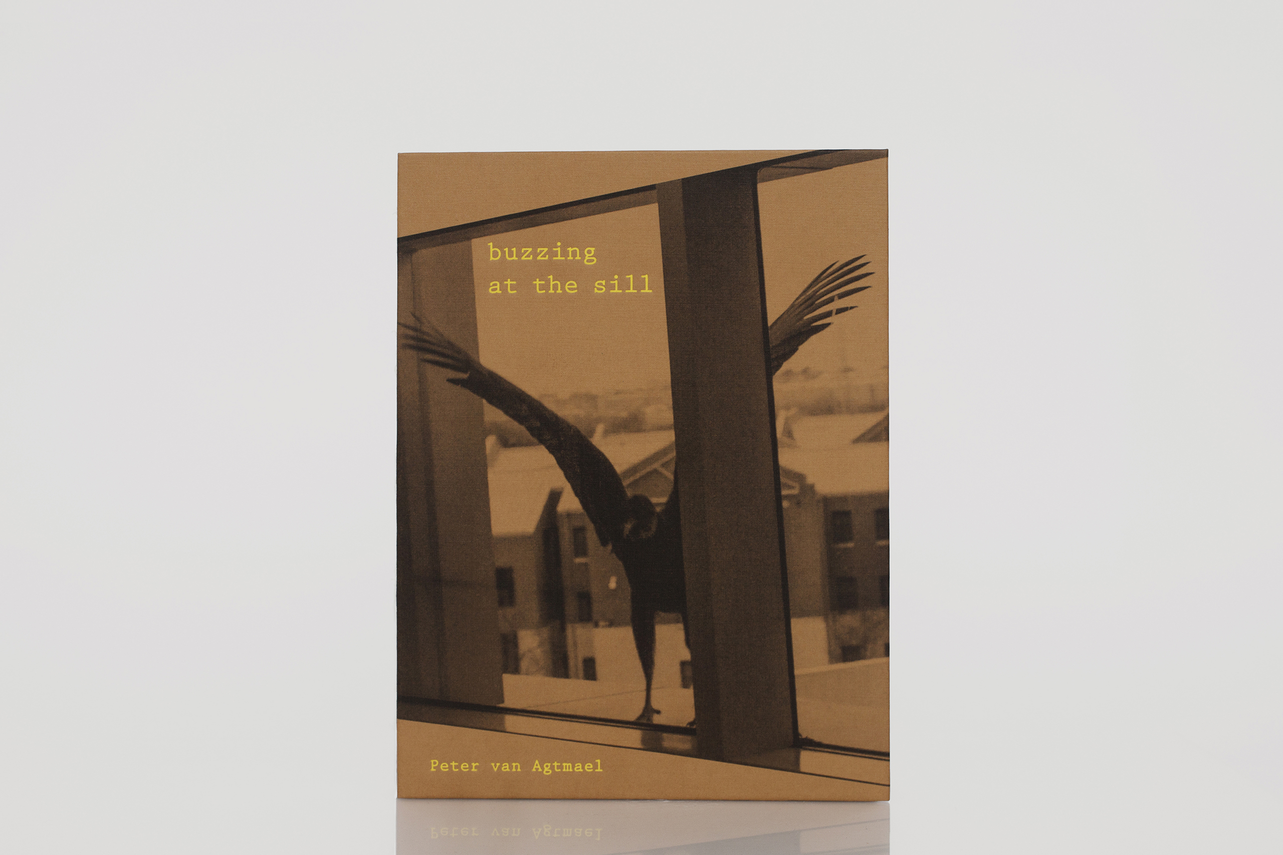 buzzing at the sill by Peter van AgtmaelPublished by Kehrer