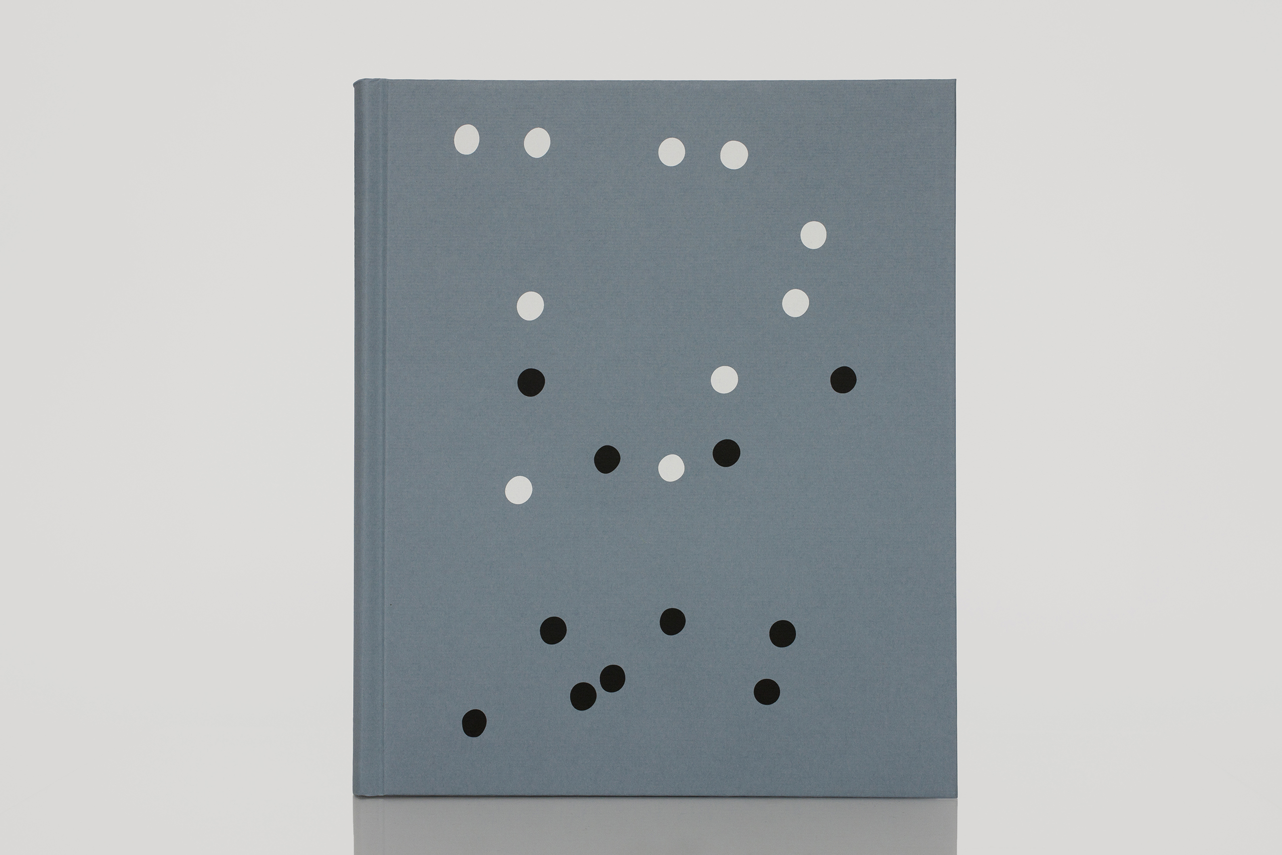 ZZYZX  by Gregory HalpernPublished by MACK