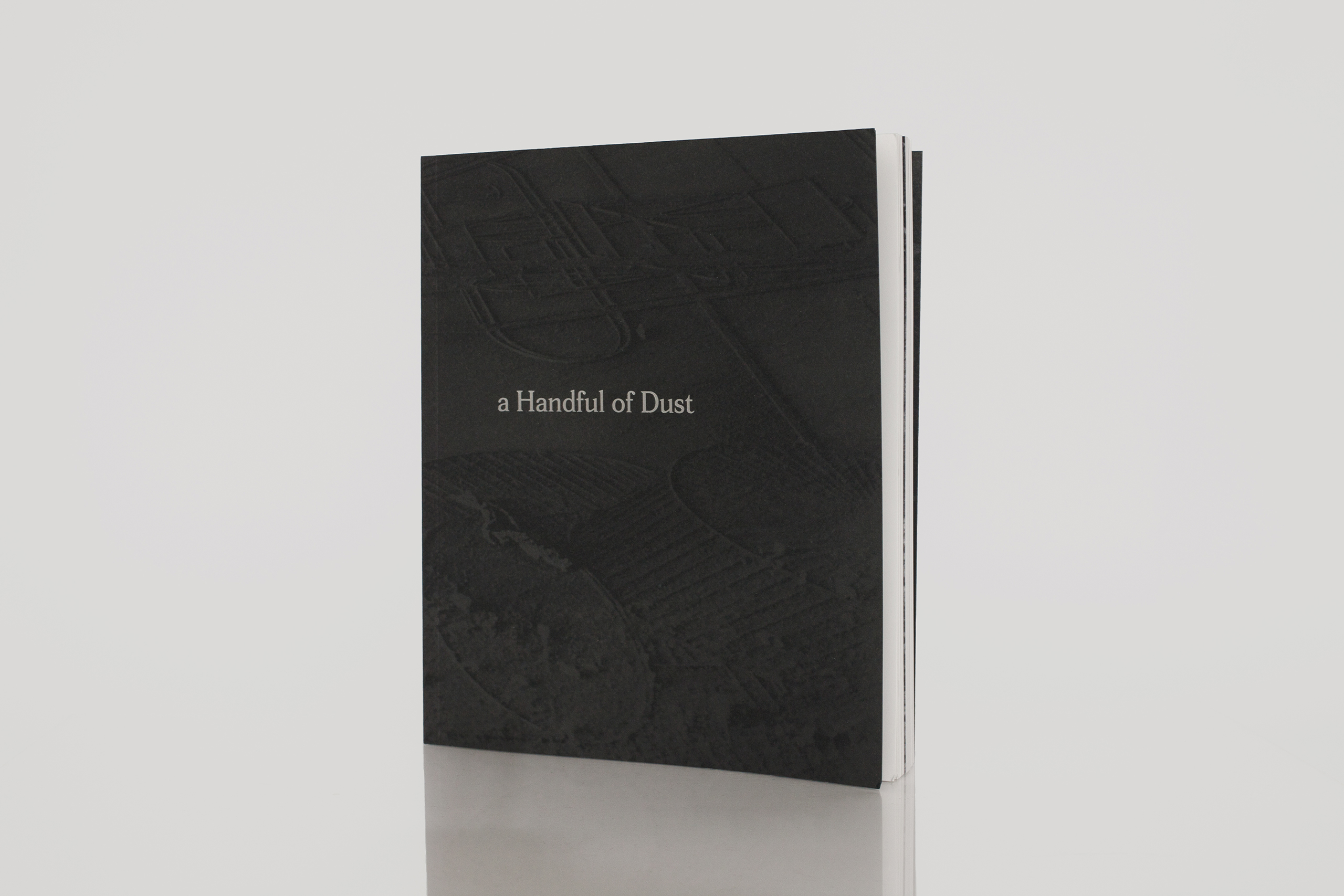 a Handful of Dust by David CampanyPublished by MACK