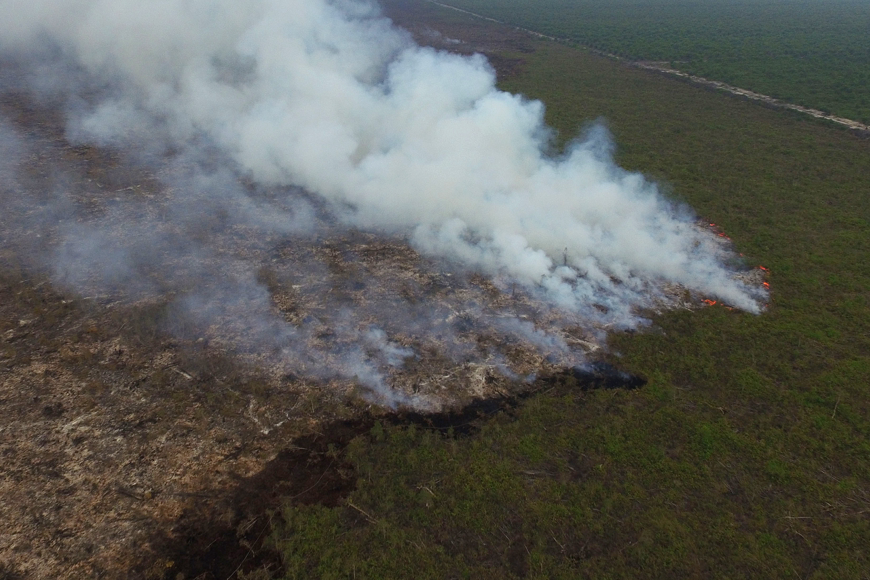 Smoke rises from a forest fire in this aerial photograph taken in Ogan Komering Ilir, South Sumatra province Indonesia, on Oct. 30, 2015