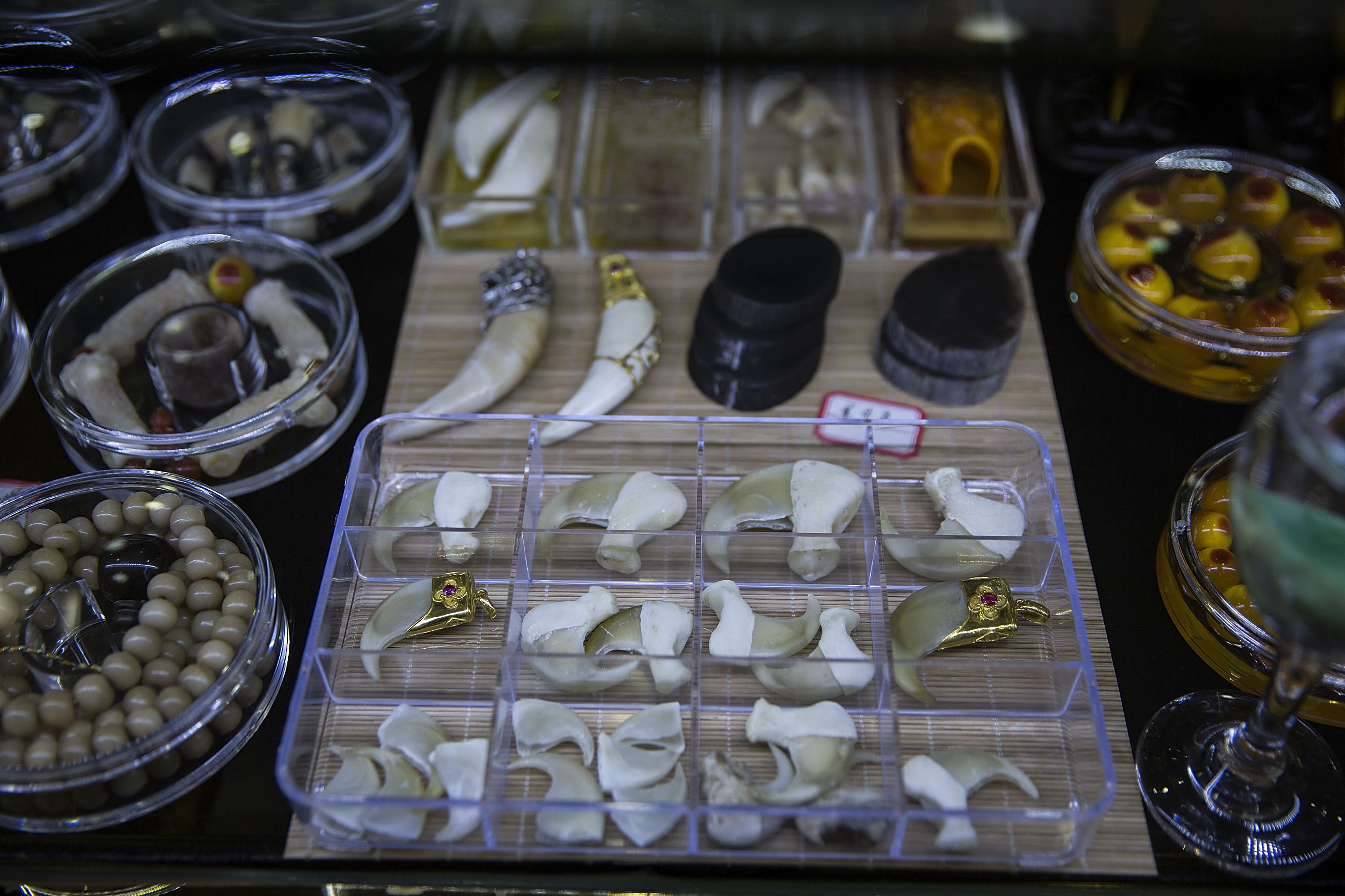 Tiger claws and teeth are sold at a high-end shop on Feb. 16, 2016, in Mong La, Burma