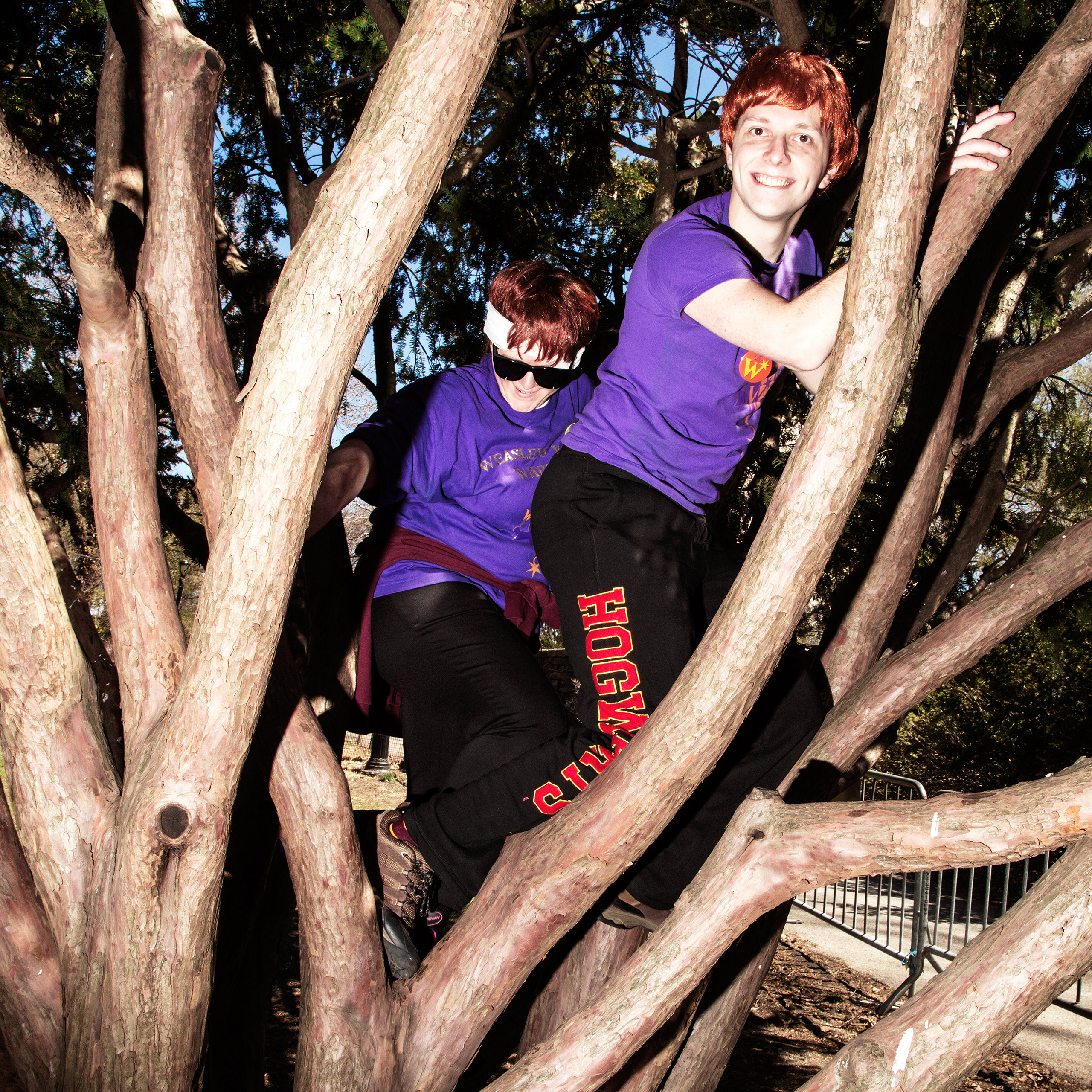 Members cosplay as the Weasley's and climb a tree at a gathering at Fort Tyron Park in Inwood.