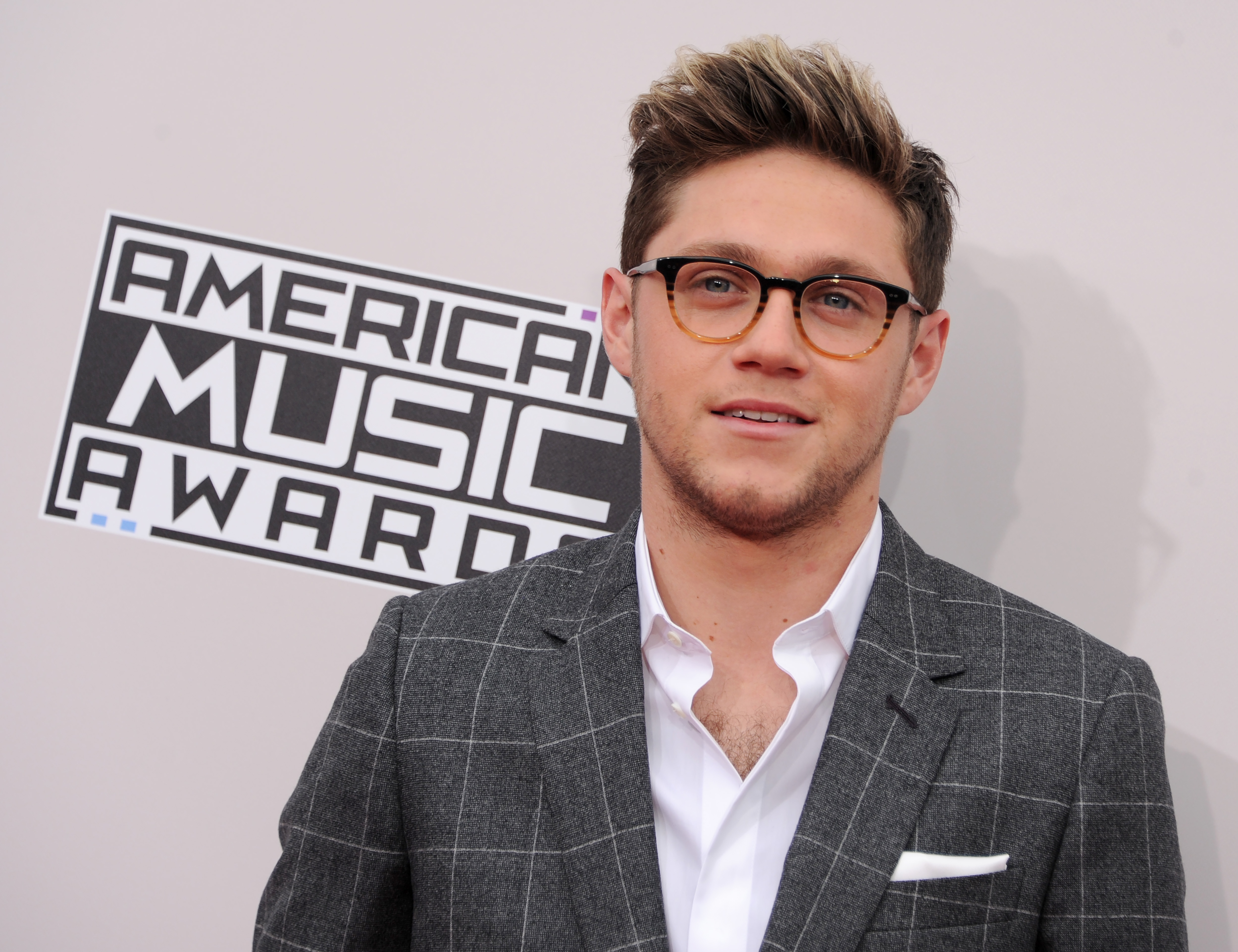 Niall Horan arrives at the 2016 American Music Awards at Microsoft Theater on November 20, 2016.