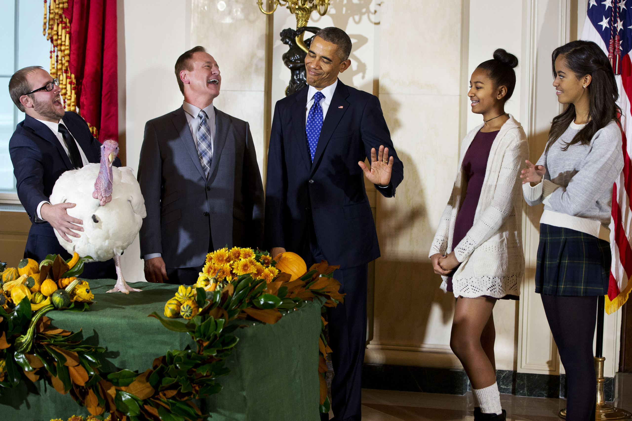 Obama gestures that his daughters Sasha and Malia would rather pass on touching  Cheese  the turkey during a ceremony at the White House on Nov. 26, 2014.