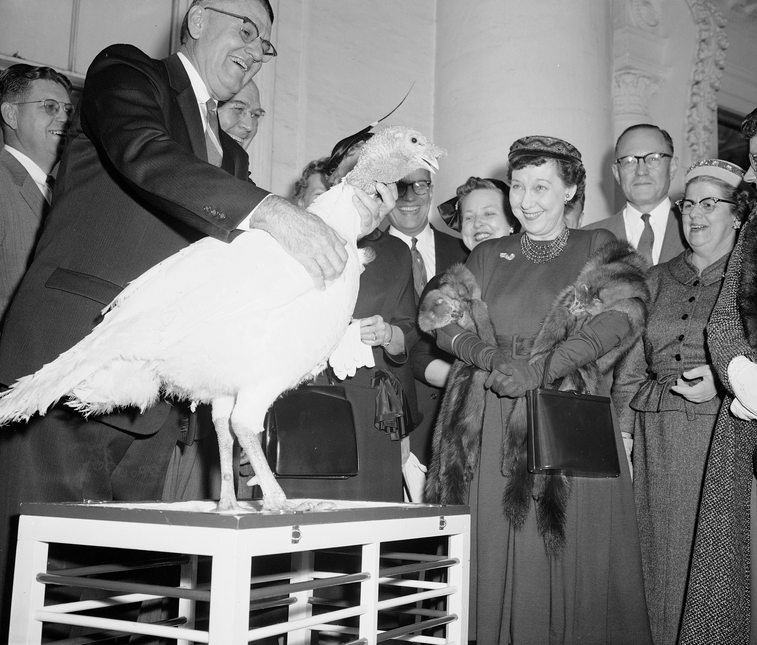 First lady Mamie Eisenhower is amused by the gobbling of a 40-pound tom turkey presented to her at the White House, on Nov. 14, 1957.