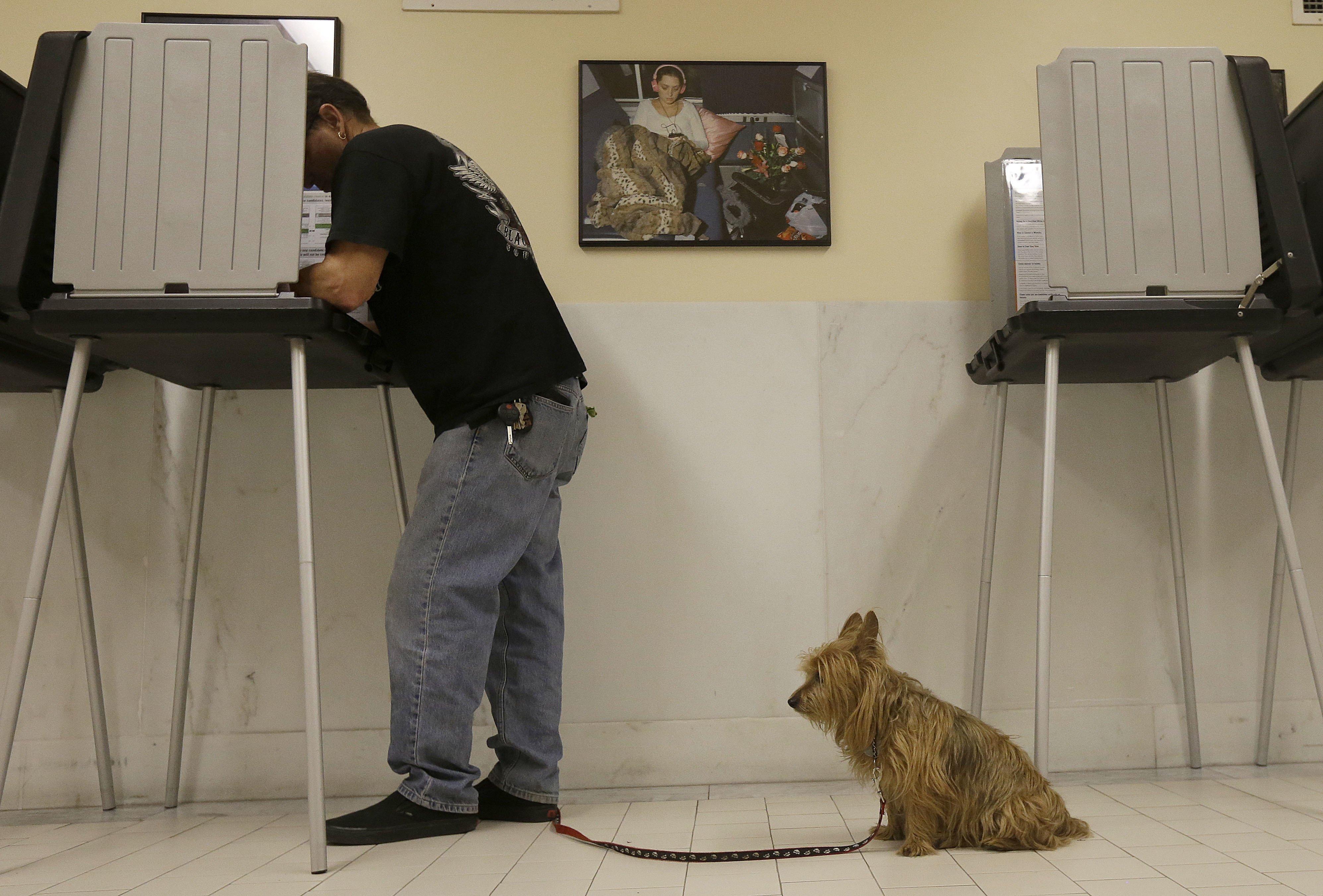 David Delacruz votes as his dog Bozco waits at City Hall in San Francisco,