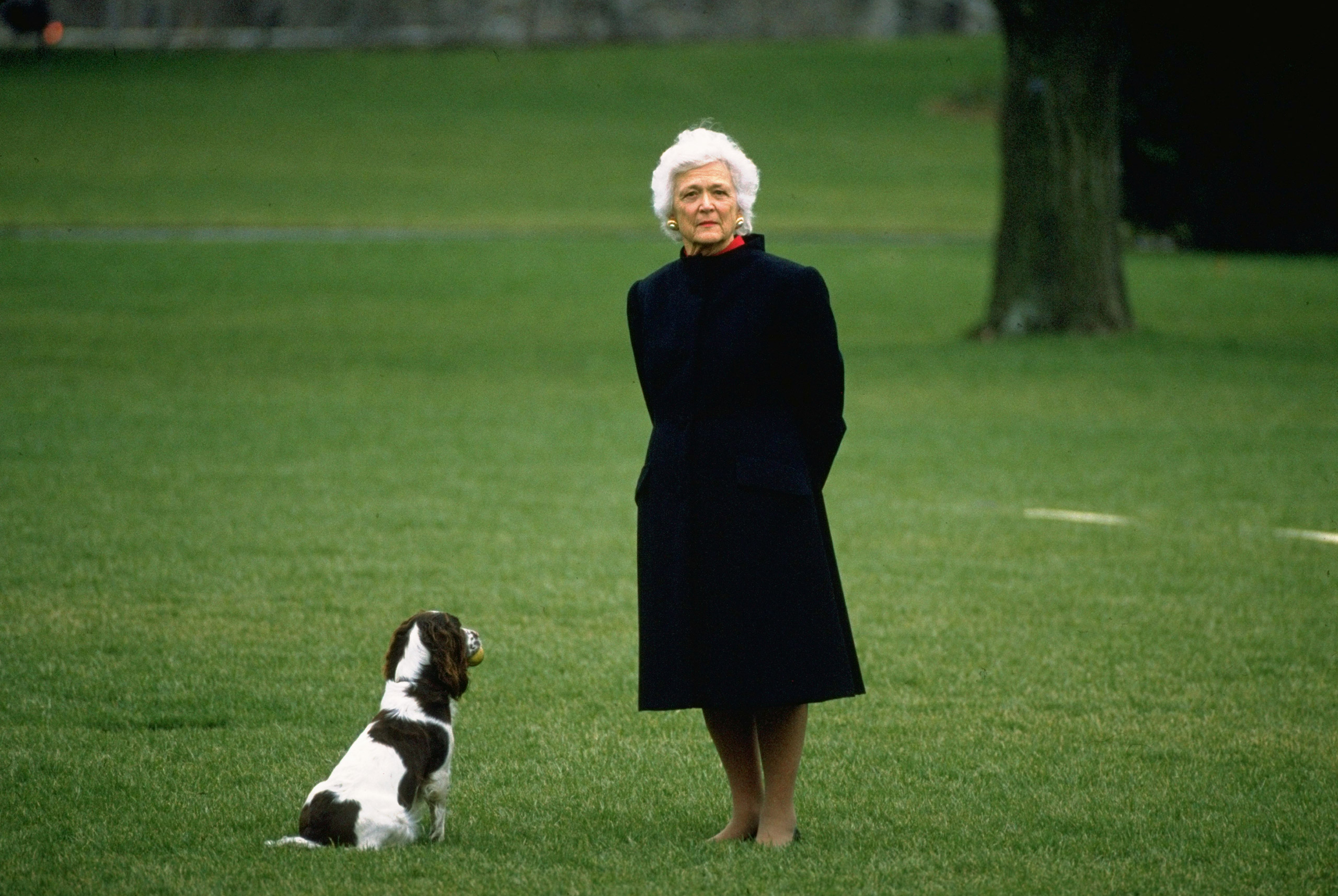 Barbara Bush with family dog Millie, on the White House lawn waiting for President Bush, 1989.