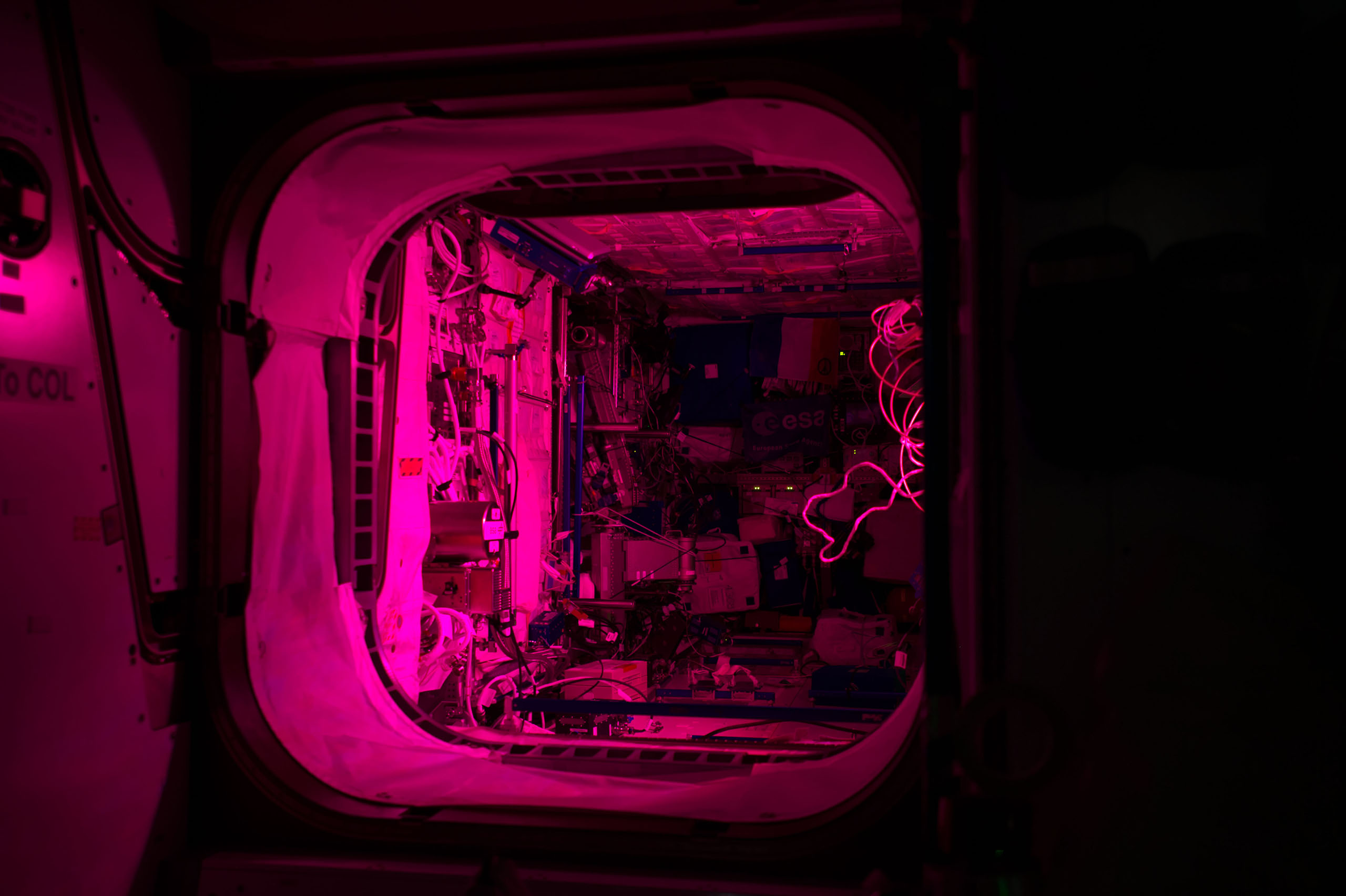Pink light from the Veggie experiment illuminates the Columbus module aboard the International Space Station on Dec. 1, 2016.