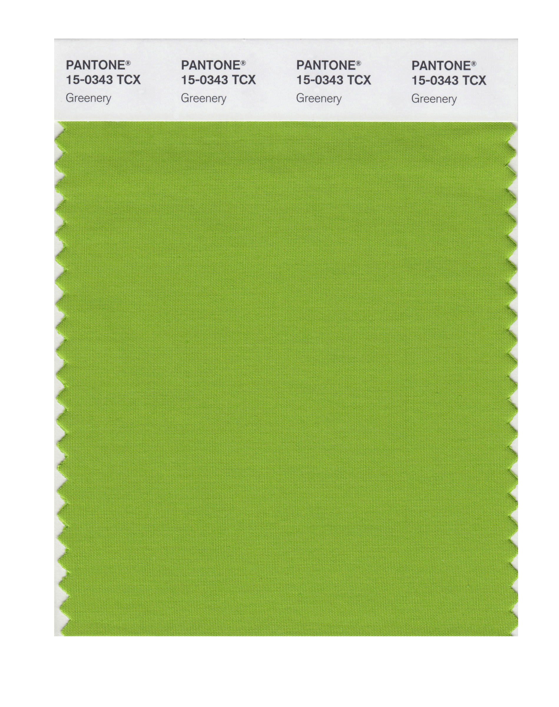 This image released by Pantone shows a color swatch called  greenery , which has been named as the color of the year for 2017 by the Pantone Color Institute.