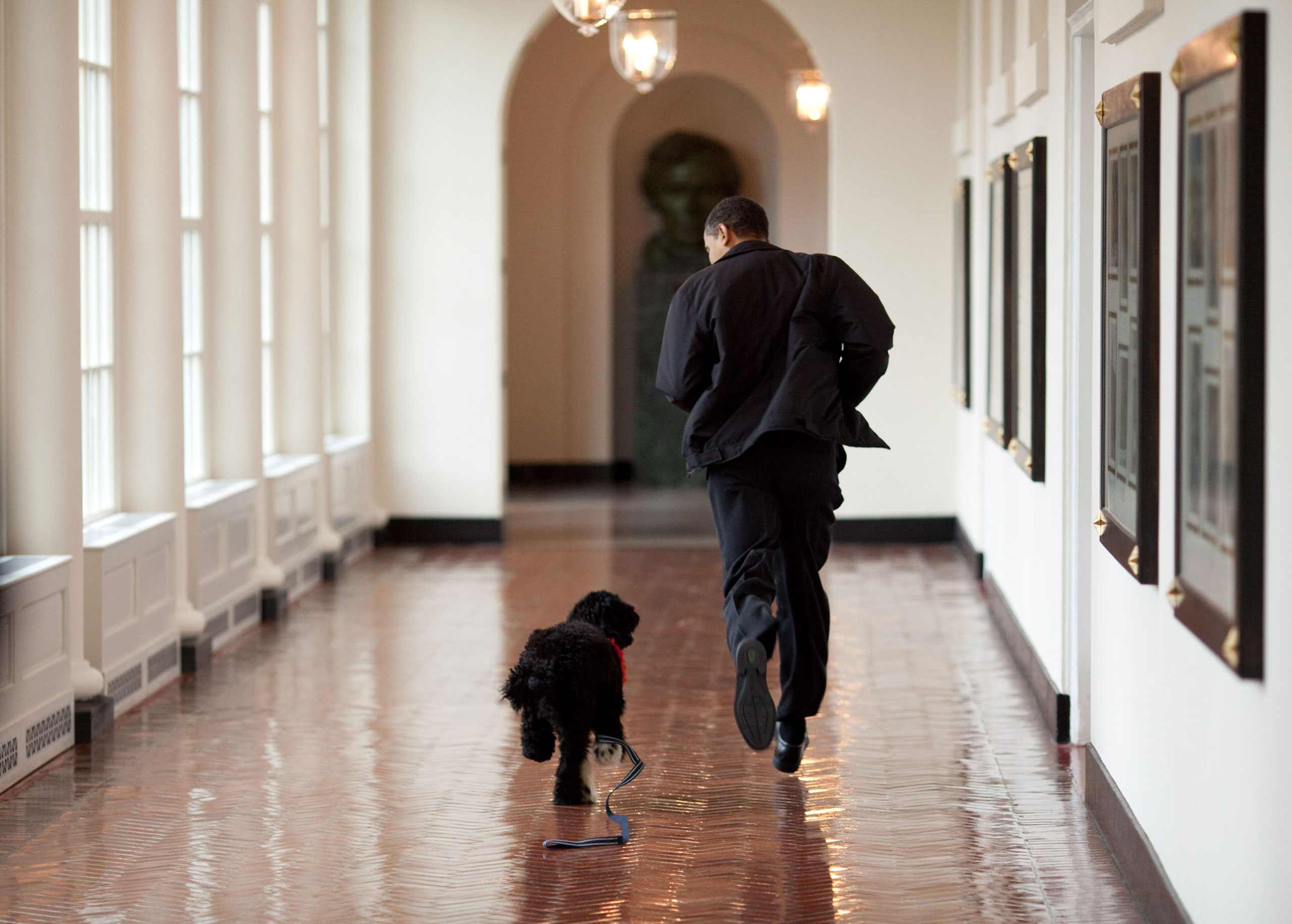 """""""The Obama family was introduced to a prospective family dog at a secret greet on a Sunday. After spending about an hour with him, the family decided he was the one. Here, the dog ran alongside the President in an East Wing hallway. The dog returned to his trainer while the Obamas embarked on their first international trip. I had to keep these photos secret until a few weeks later, when the dog was brought 'home' to the White House and introduced to the world as Bo,""""                               March 15, 2009."""
