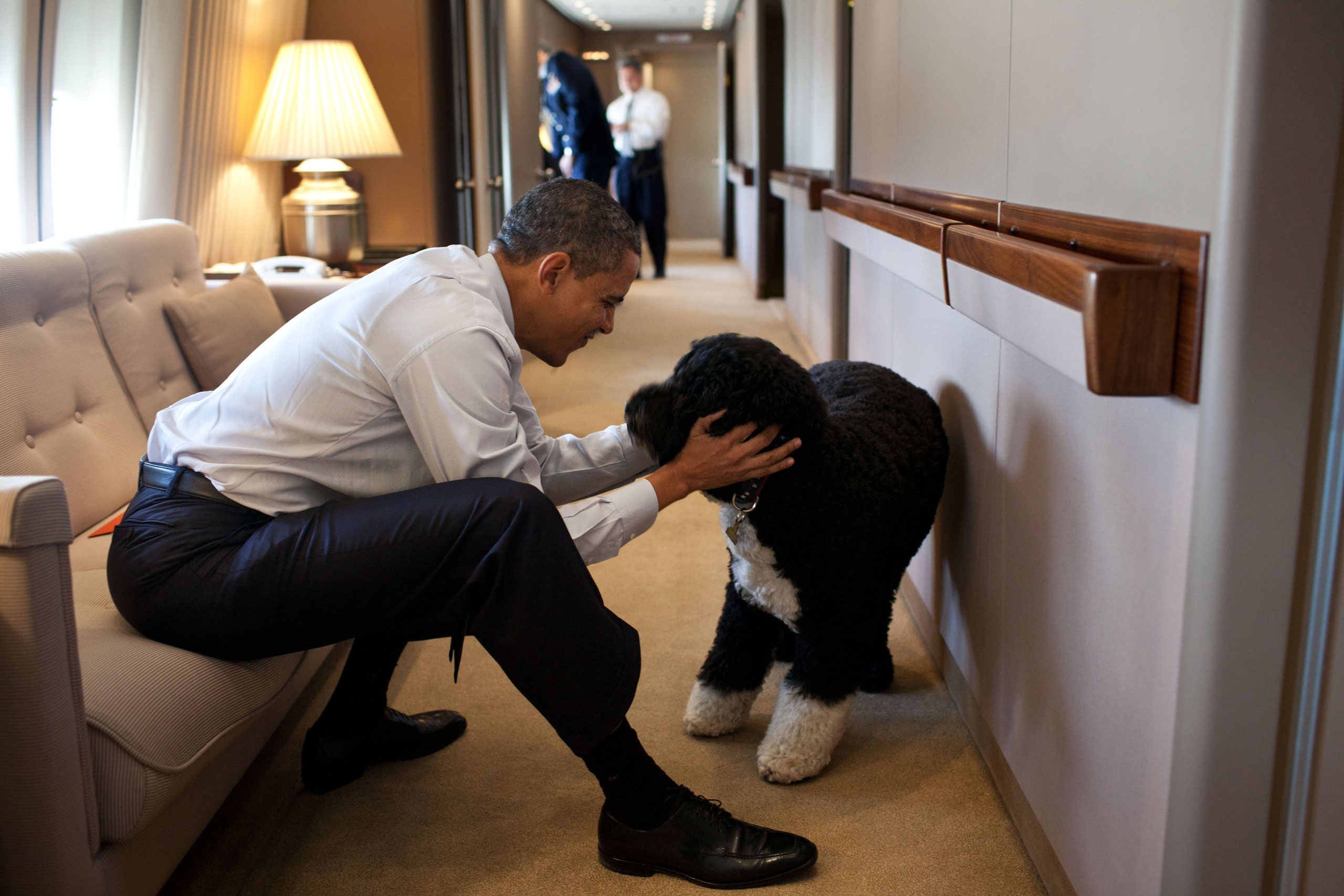 President Barack Obama plays with Bo, the Obama family dog, aboard Air Force One during a flight to Hawaii, Dec. 23, 2011.