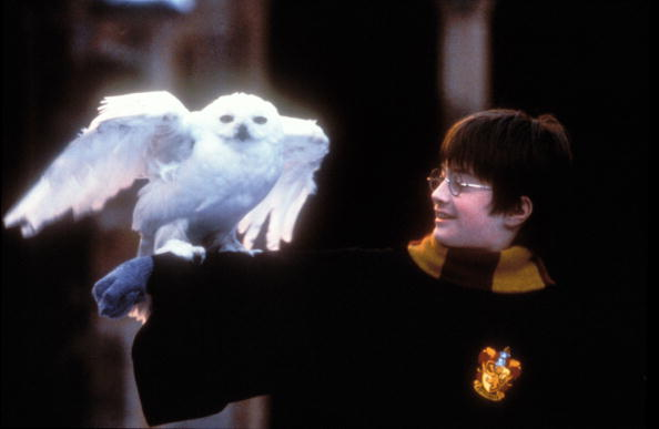Harry Potter and The Sorcerer's Stone - Movie Stills