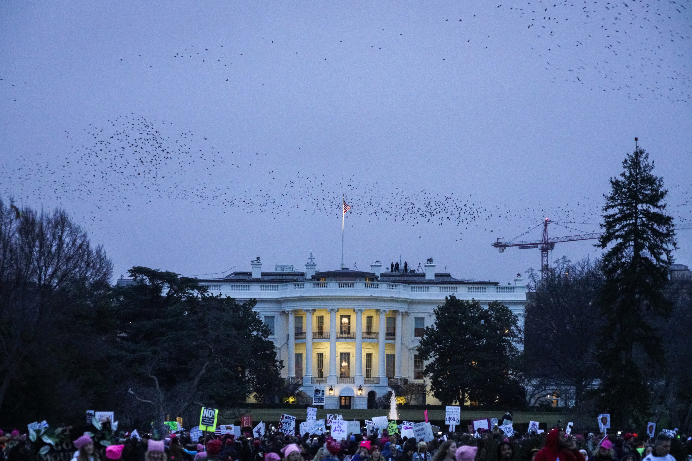 Protestors march to                                    The White House at the end of Women's March in Washington, D.C., on Friday, Jan. 21, 2017.