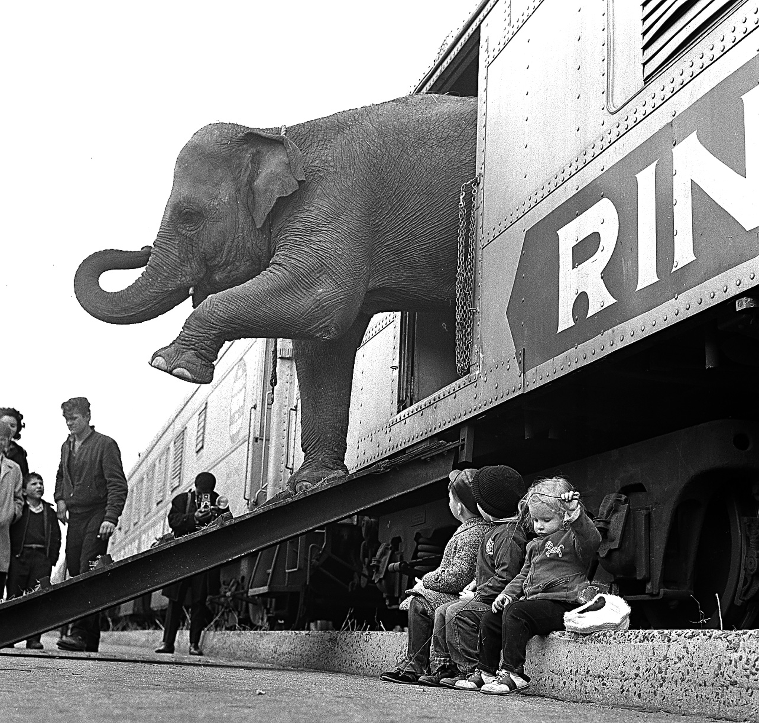 A Ringling Brothers Circus elephant walks out of a train car as young children watch in the Bronx railroad yard in New York City on April 1, 1963.