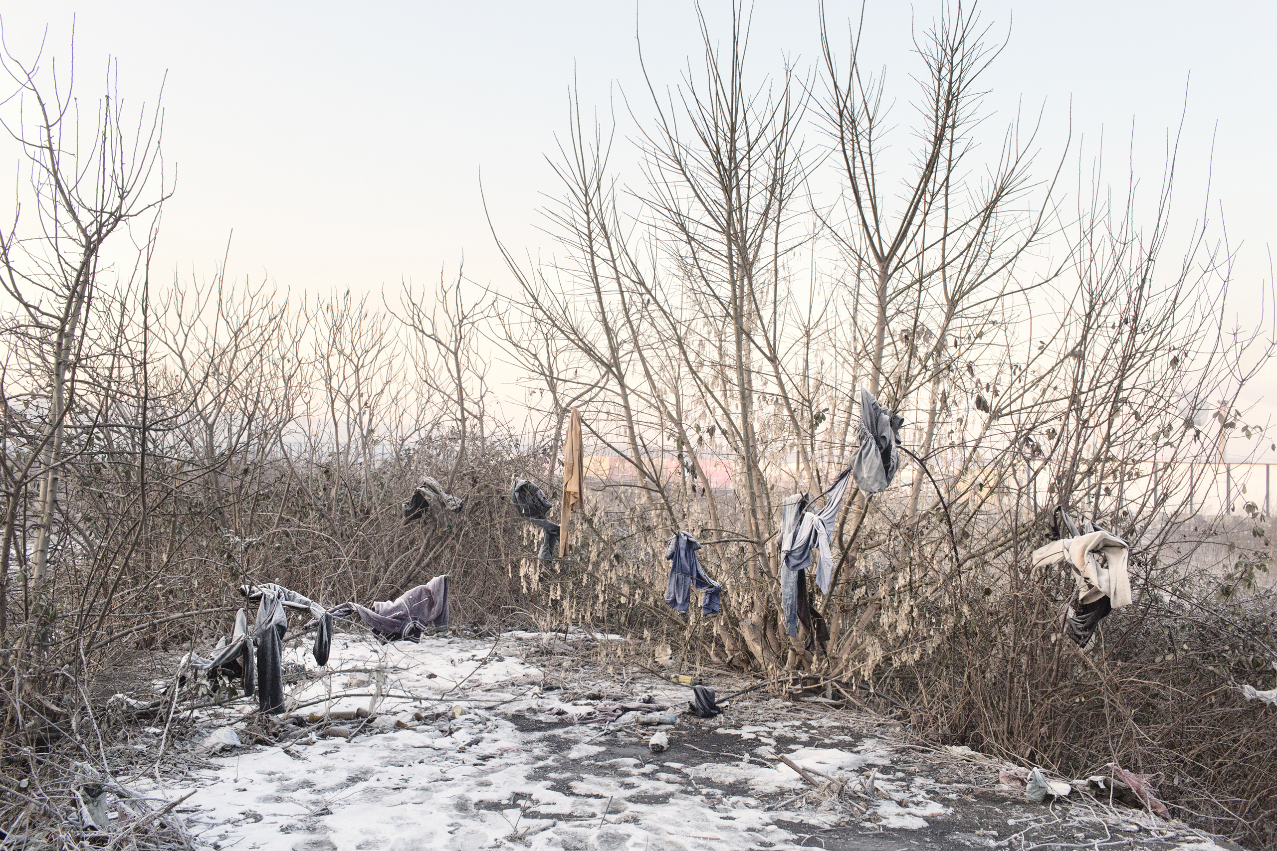 Clothes, frozen from the cold, are left on trees by migrants living in terrible conditions in abandoned buildings near the train station, Belgrade, Serbia,  Jan 15, 2017.