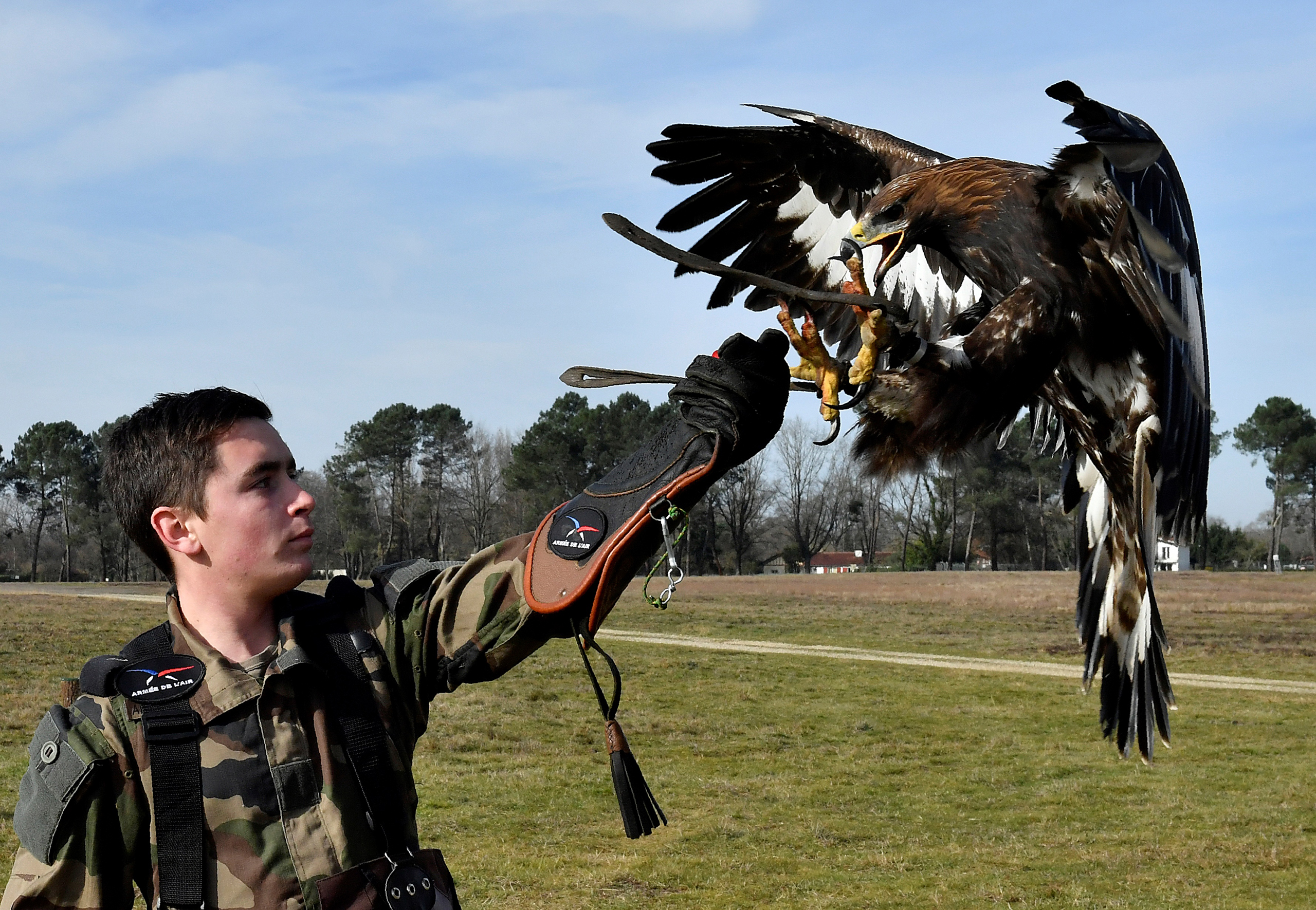 A soldier trains an eagle during a military exercise at the Mont-de-Marsan airbase in southwestern France on Feb. 10, 2017.