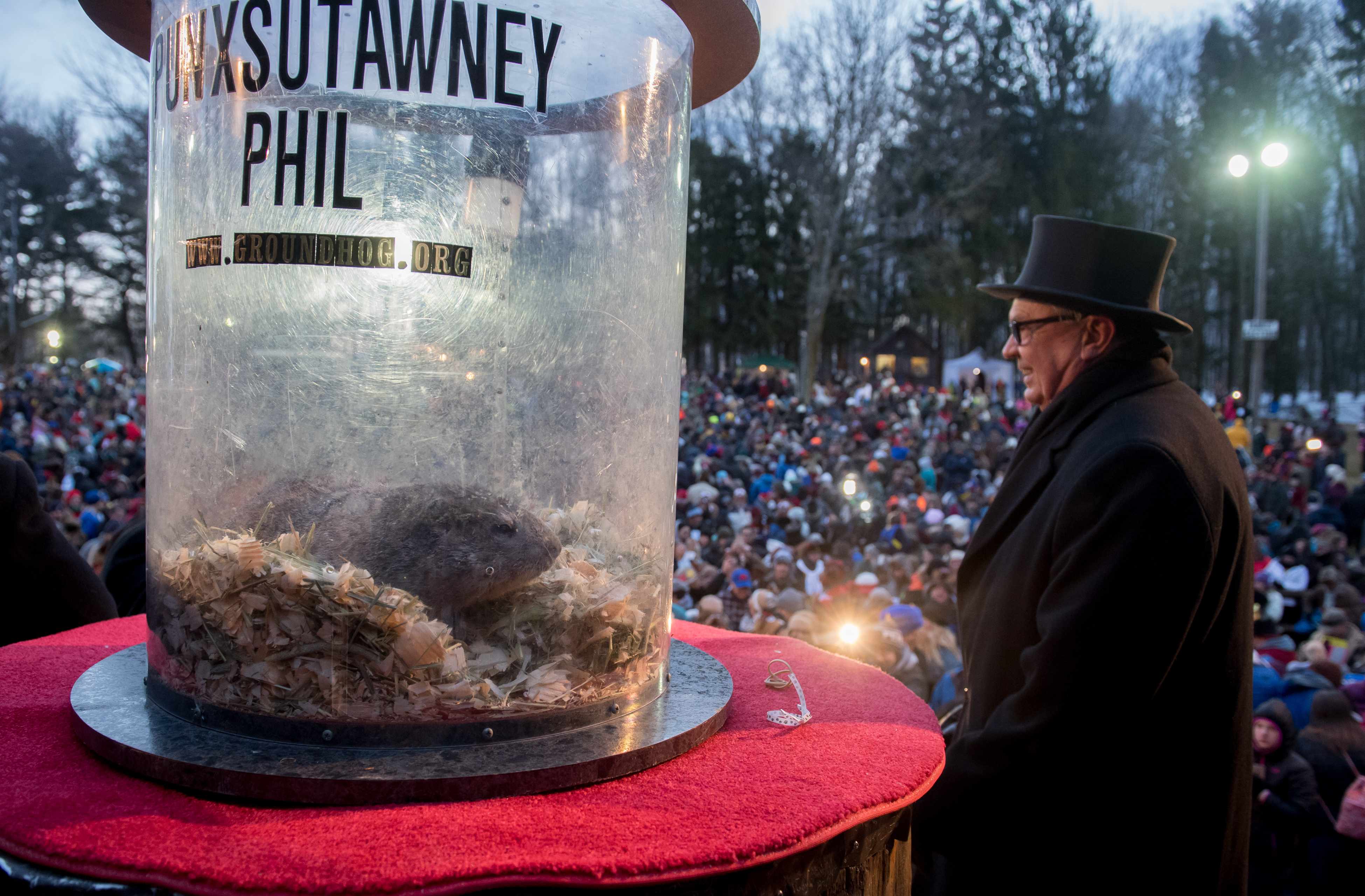Punxsutawney Phil saw his shadow predicting six more weeks of winter during 131st annual Groundhog Day festivities on February 2, 2017 in Punxsutawney, Pennsylvania.