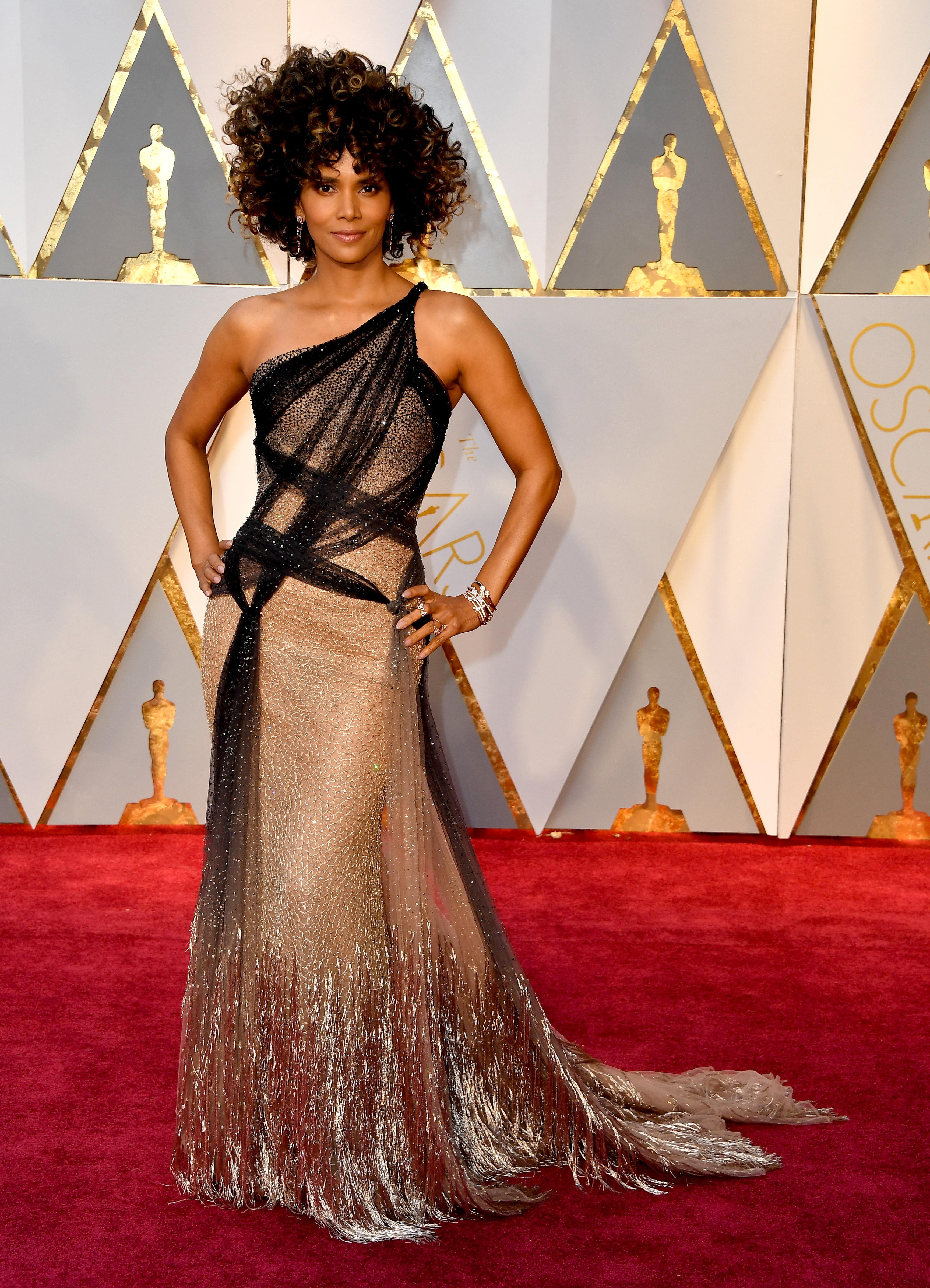 HOLLYWOOD, CA - FEBRUARY 26: Actor Halle Berry attends the 89th Annual Academy Awards at Hollywood & Highland Center on February 26, 2017 in Hollywood, California. (Photo by Steve Granitz/WireImage)