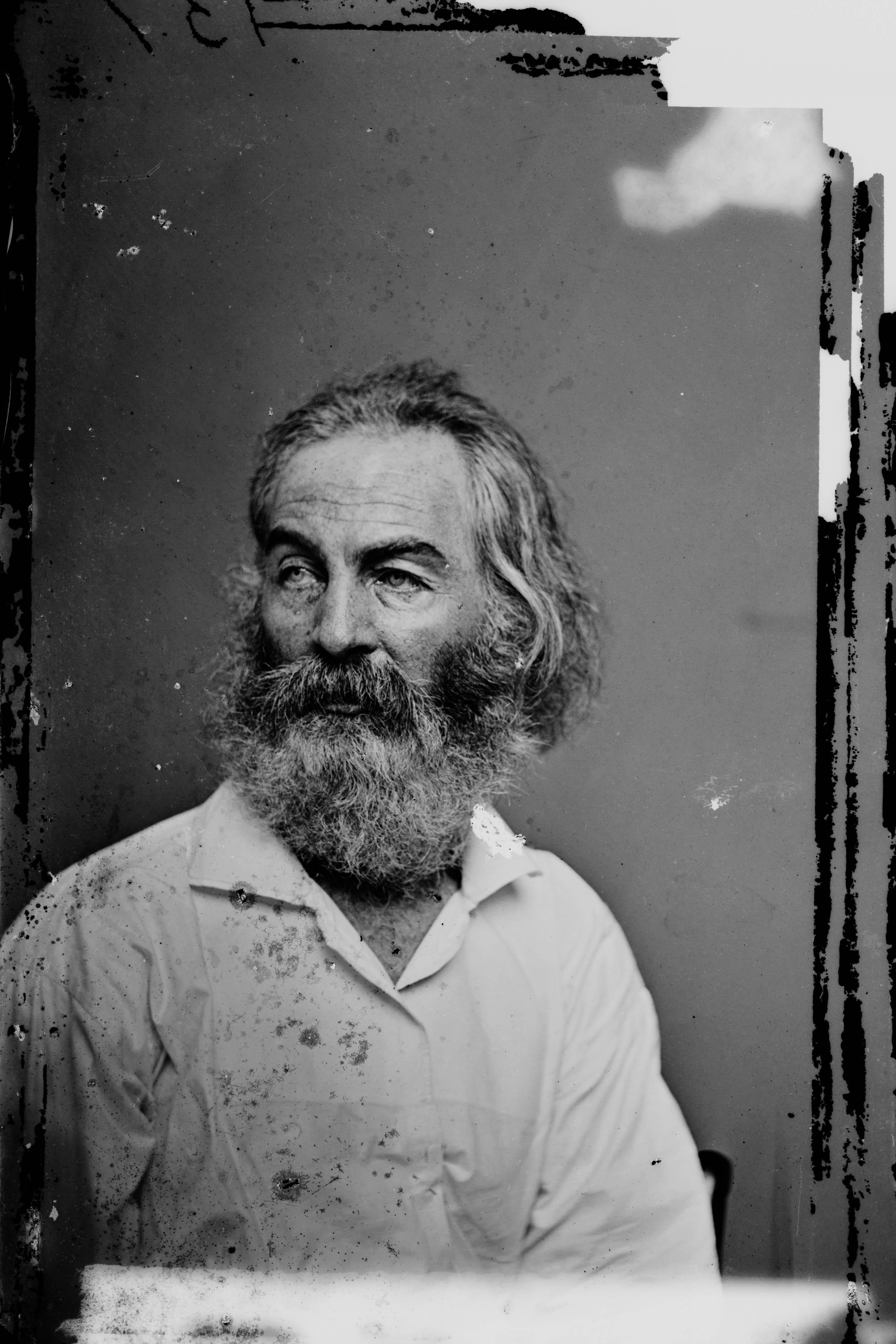 Walt Whitman circa 1880.