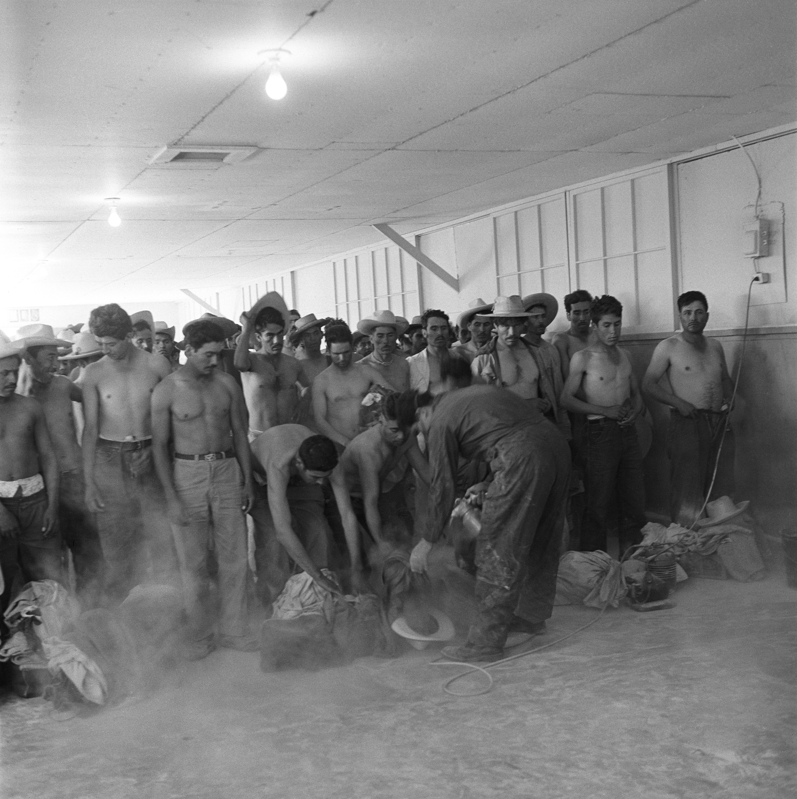 After the various medical examinations, the men are dusted with DDT.