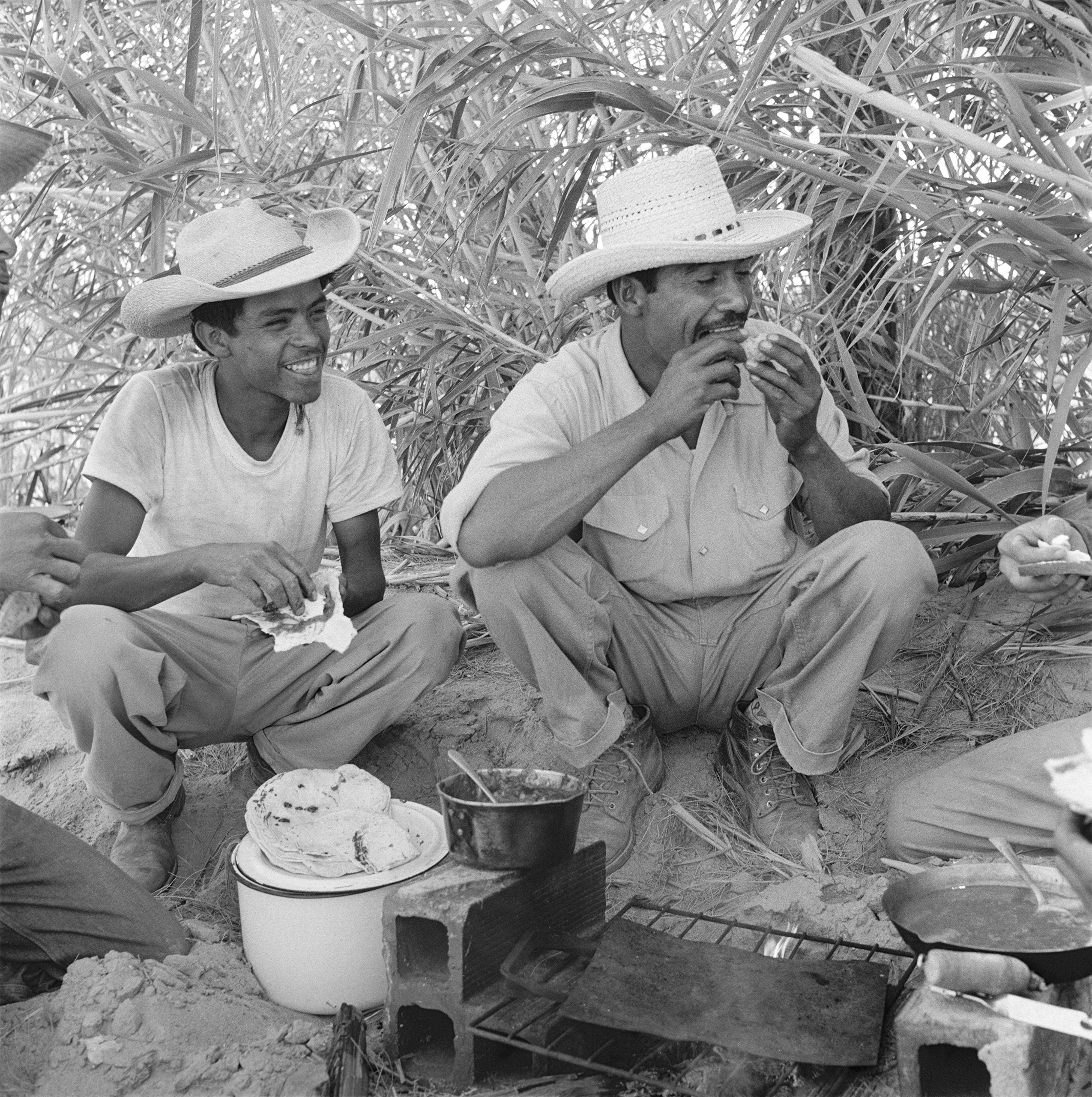 Tamayo and his fellow workers take a break for food during their work day on a ranch in California, 1957.