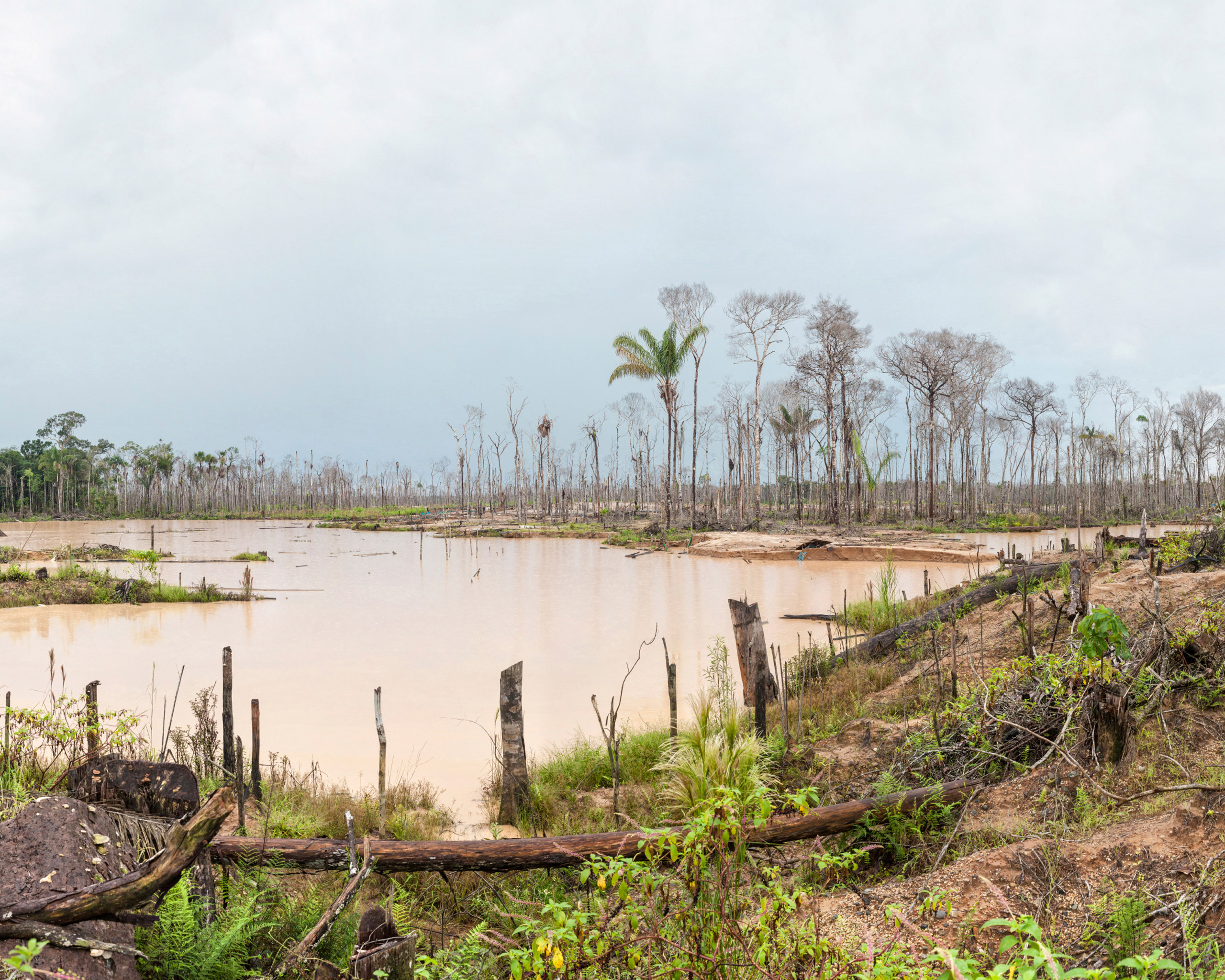 Illegal mining in Madre de Dios, Peru, is devastating the jungle and natural environment.
