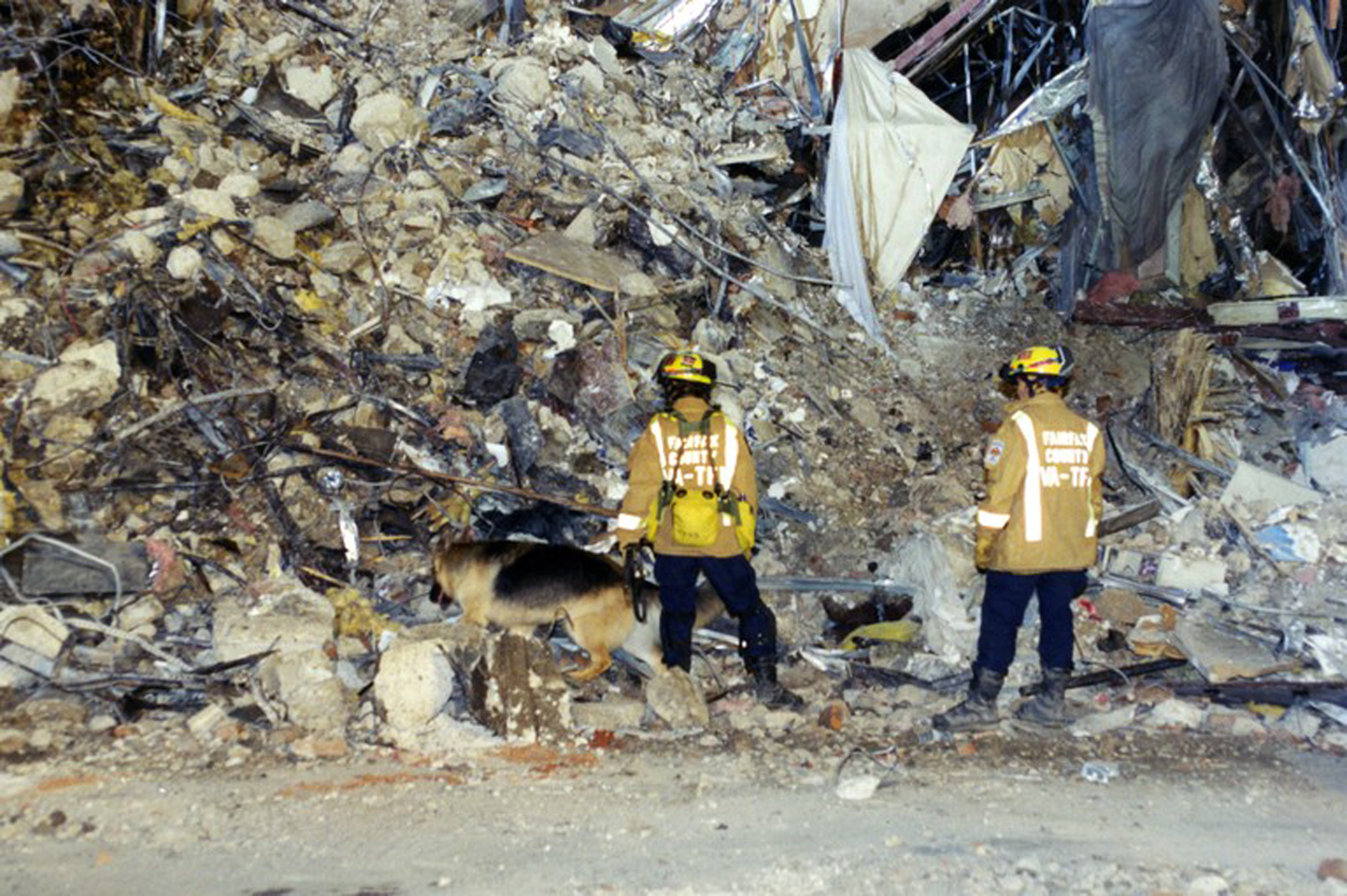 Members of the emergency services search with a sniffer dog after the hijacked American Airlines Flight 77 crashed into the Pentagon in Arlington County, Virginia, on Sept. 11, 2001.