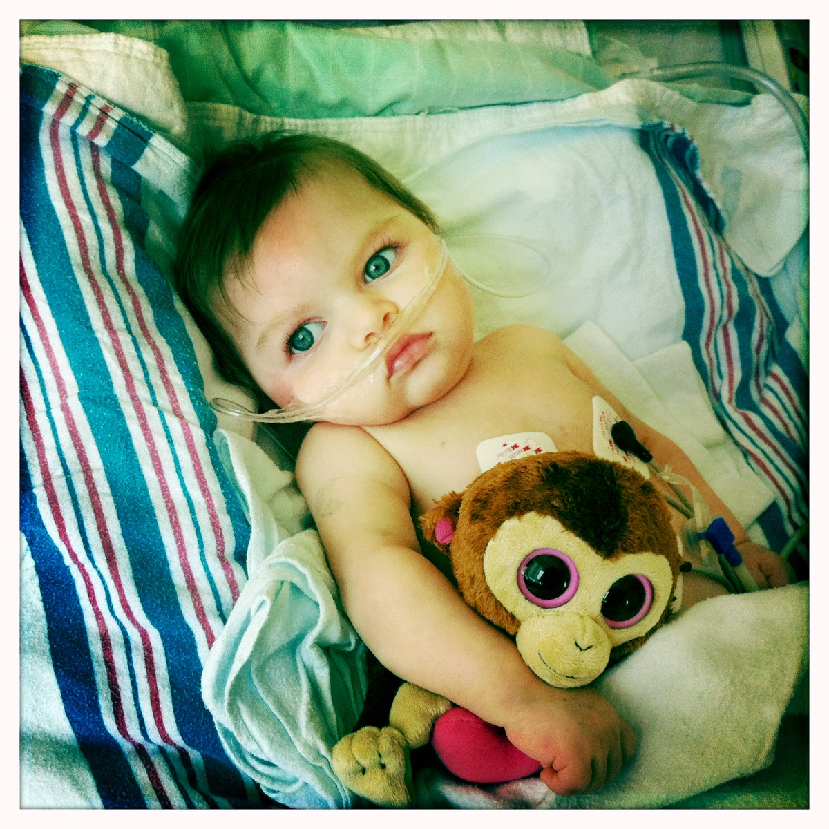Lula Neave Walker Murray holds a stuffed animal.
