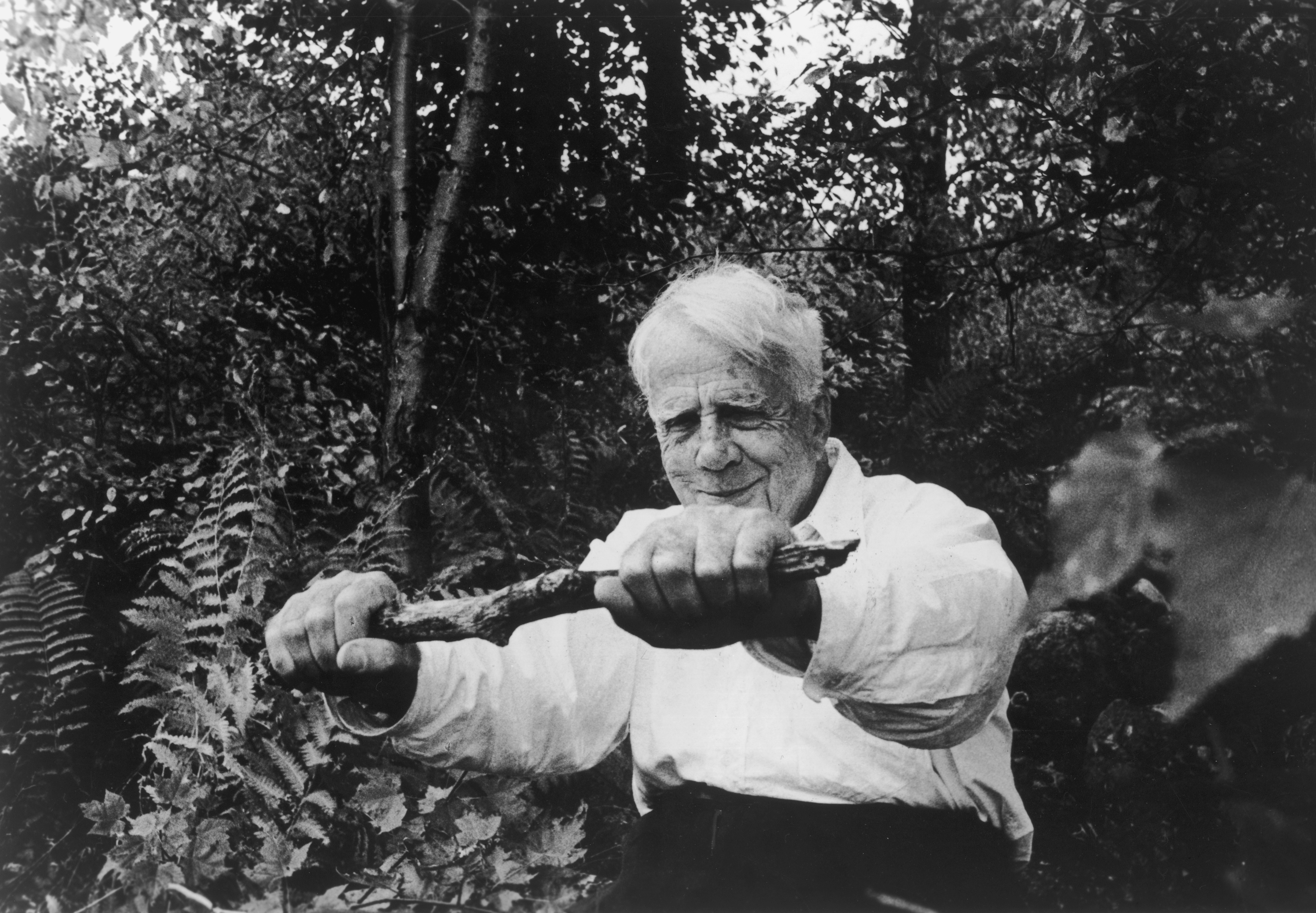 American poet and 1924 Pulitzer Prize winner Robert Lee Frost (1874-1963) holds a stick in both hands at arms length in a forest, circa 1960.