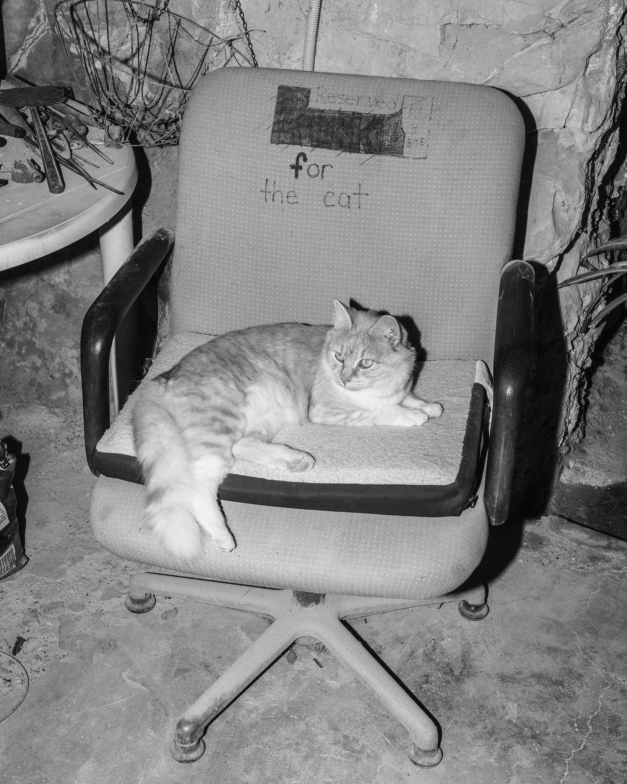 Reserved for the cat, Coober Pedy, Australia, 2016.