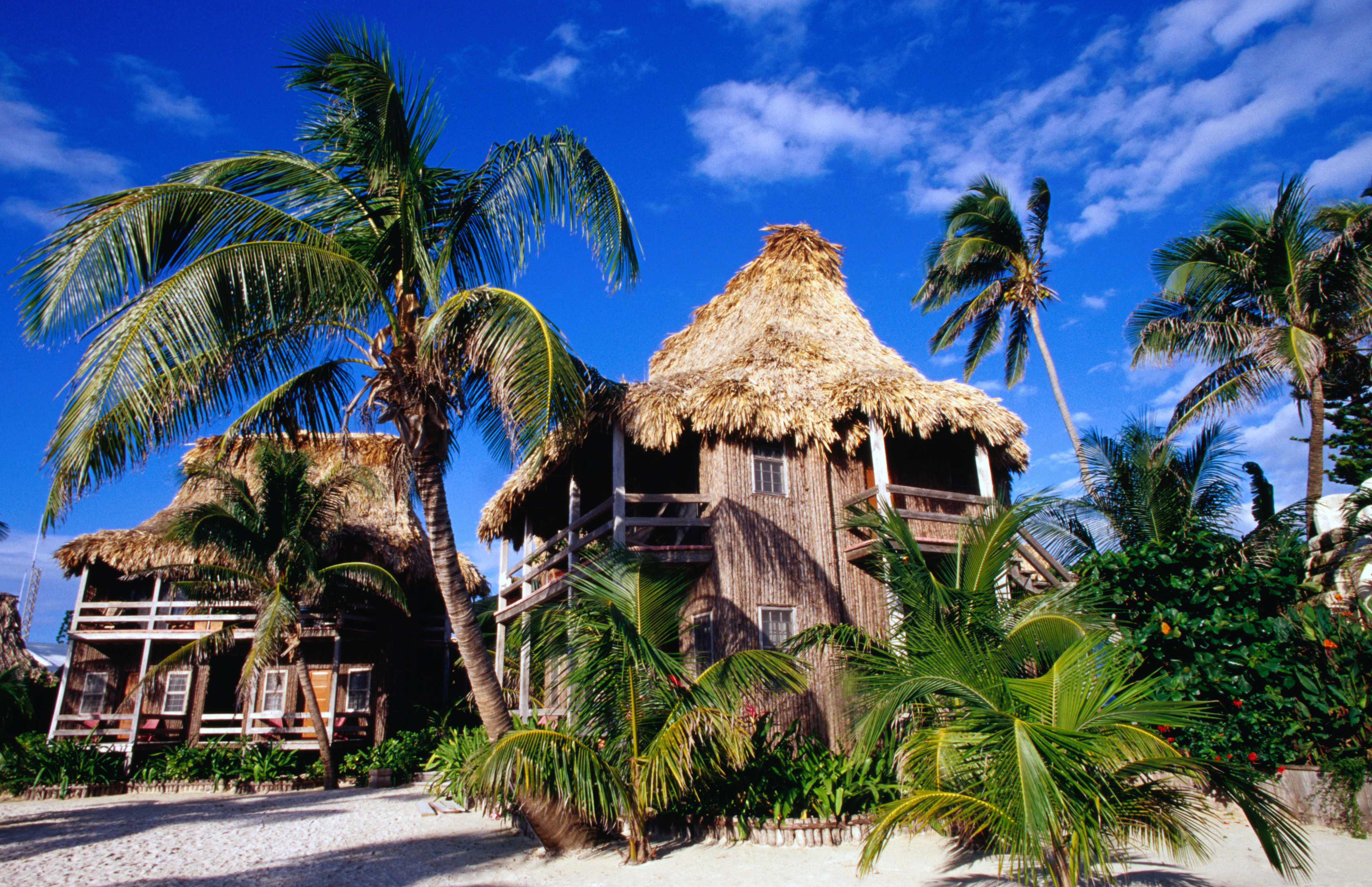 Resort buildings and palm trees, Ambergris Cave.