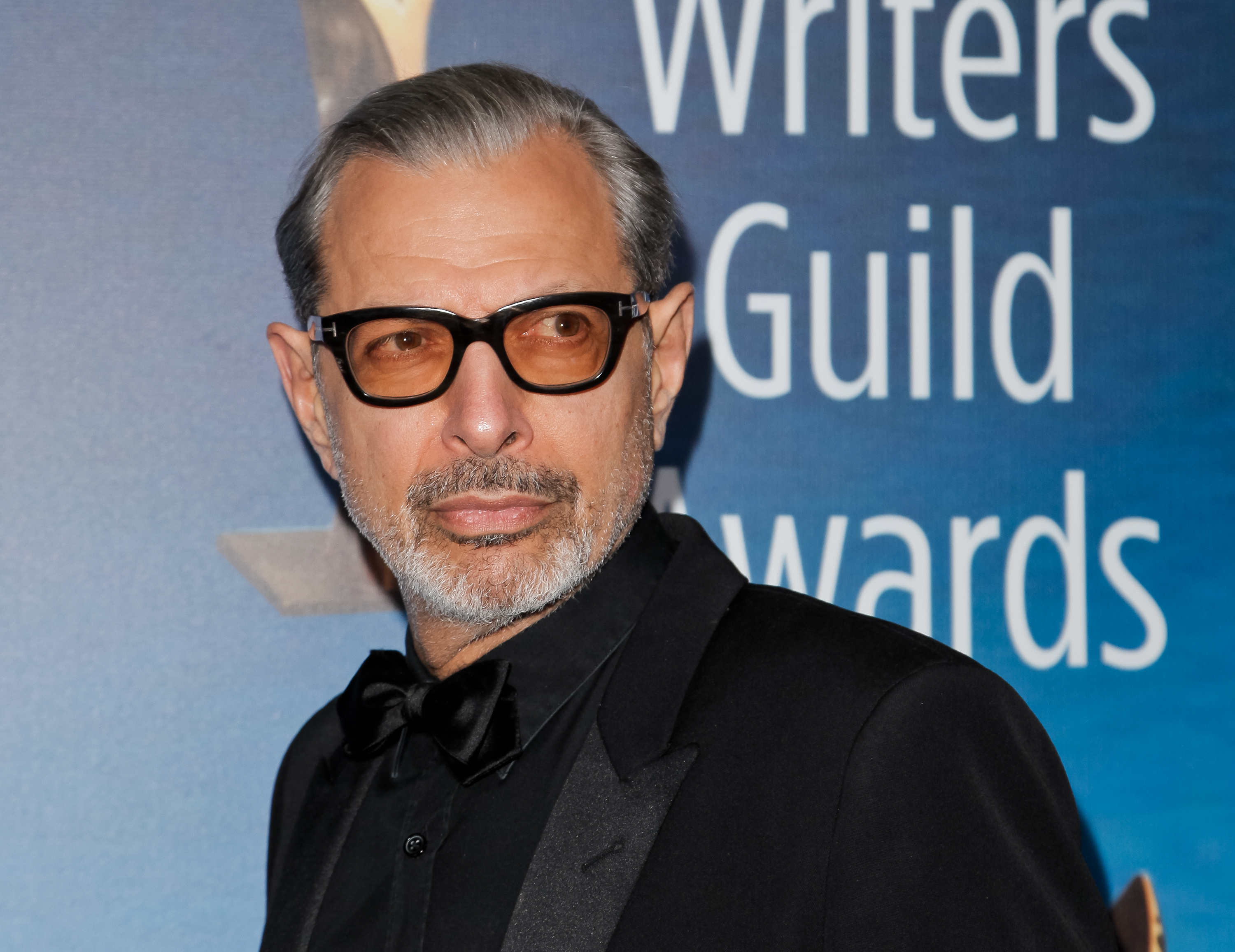 Jeff Goldblum attends the 2017 Writers Guild Awards L.A. Ceremony on Feb. 19, 2017 in Beverly Hills, California.
