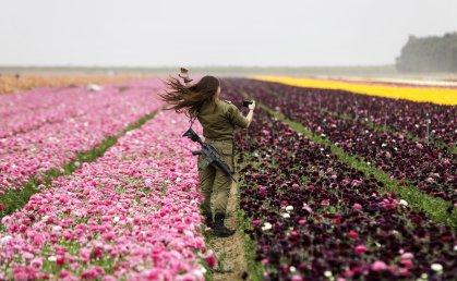An Israeli soldier in a field of Ranunculus flowers in the southern Israeli Kibbutz of Nir Yitzhak, located along the Israeli-Gaza Strip border on April 12, 2017.