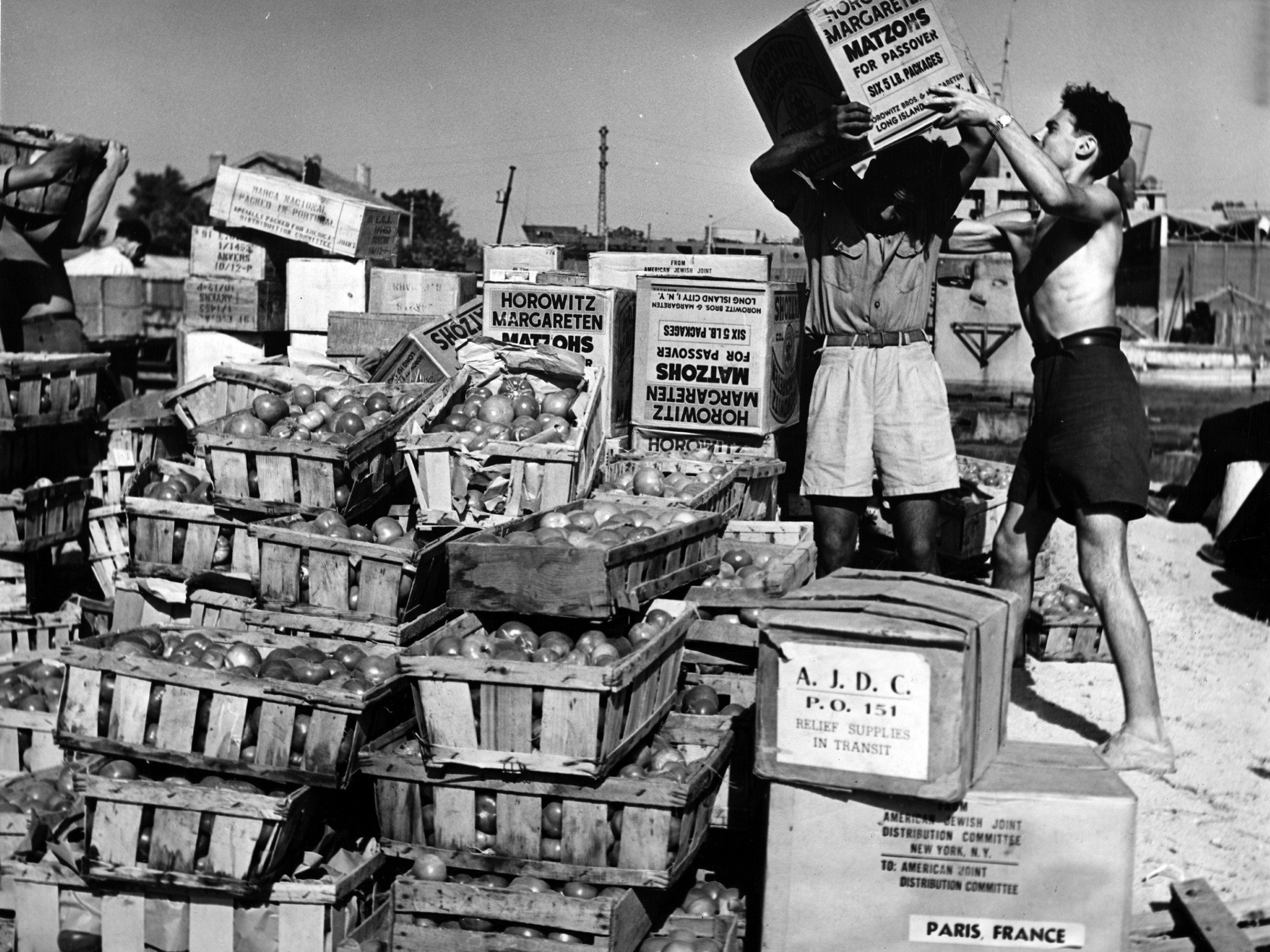 Fresh fruit and Passover matzo being delivered to the 4,400 Jewish migrants on the SS Exodus 1947, intercepted by the British attempting to enter Palestine. Port De Bouc, France, c. 1947. Photographer: Al Taylor.