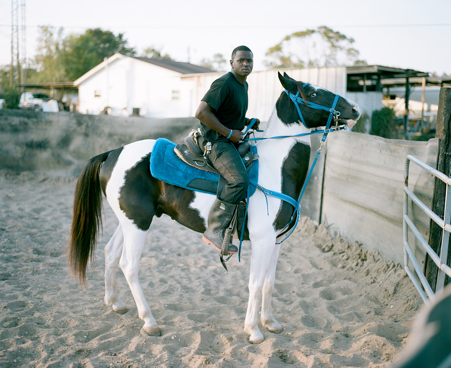 Jesse trains and preps his horse named  Dream  for Mardi Gras. 2014