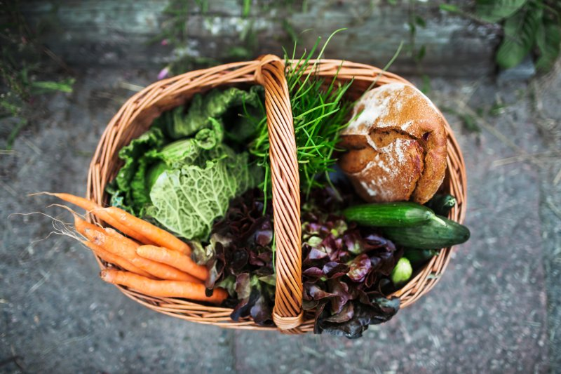 4 Science-Backed Health Benefits of Eating Organic