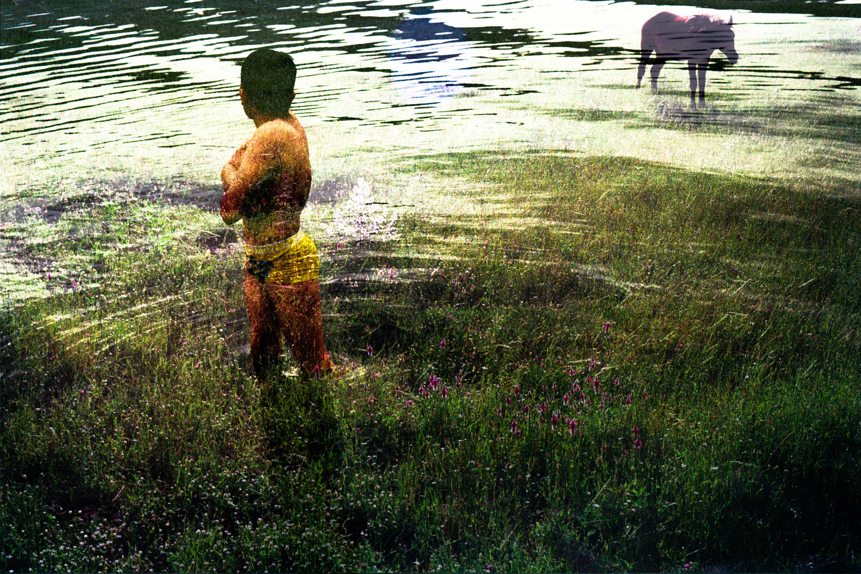A boy swims in Dukan Lake, Iraqi Kurdistan, May 7, 2016. The horse was photographed near the village of Piramagrun, Iraqi Kurdistan. Many Kurds remedy the late spring heat by swimming in the cool waters of Dukan Lake.